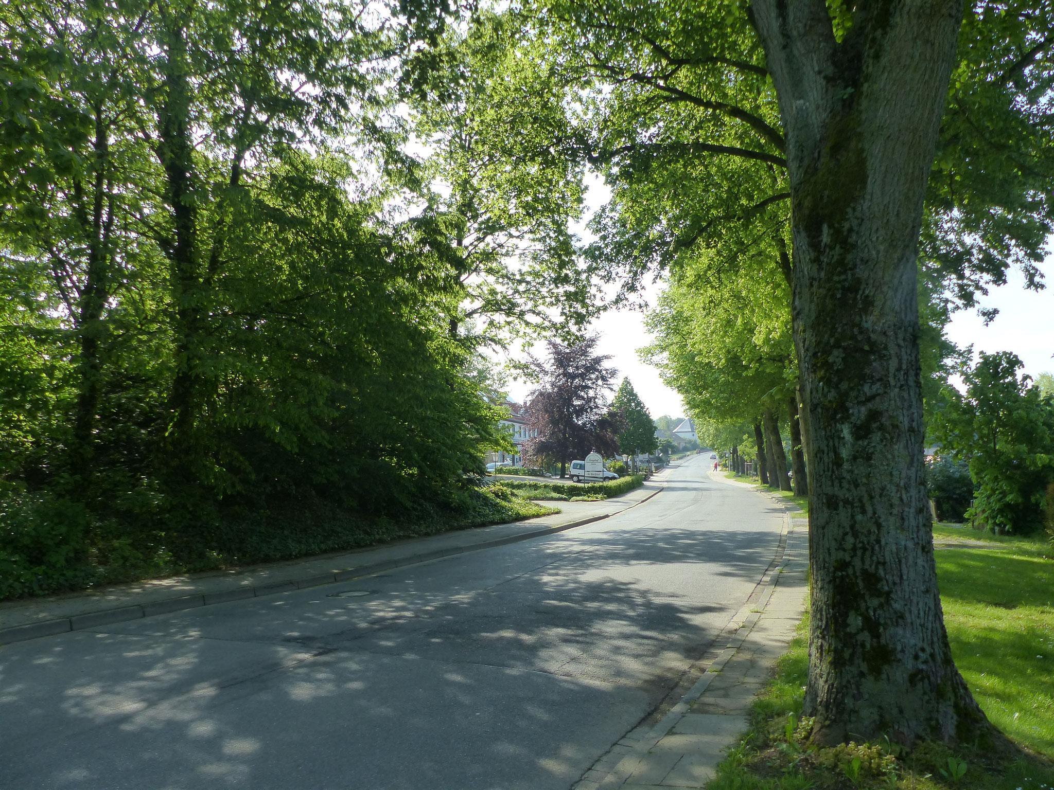 Sauerlandstraße dorfaufwärts