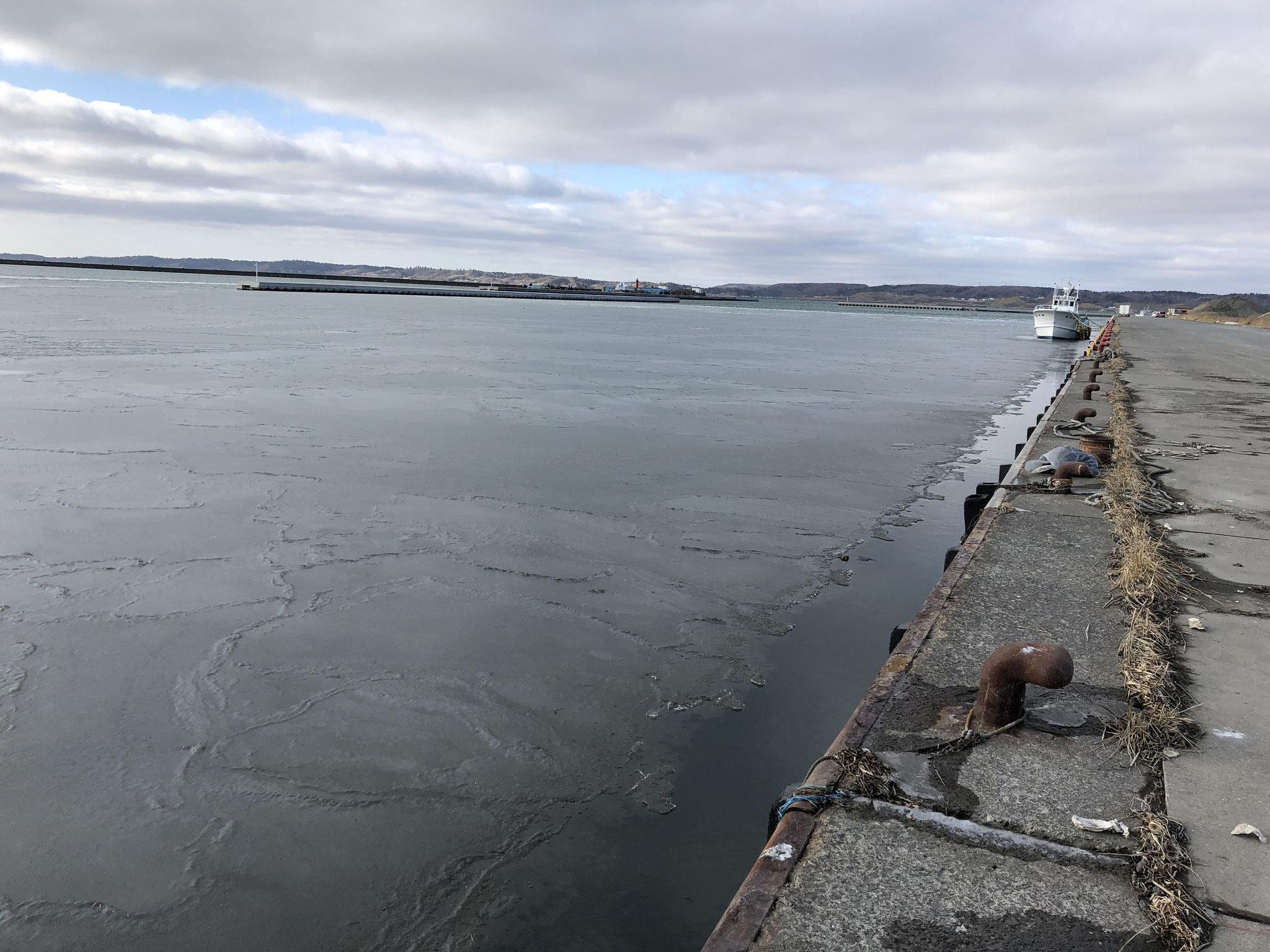 氷が張った岸壁