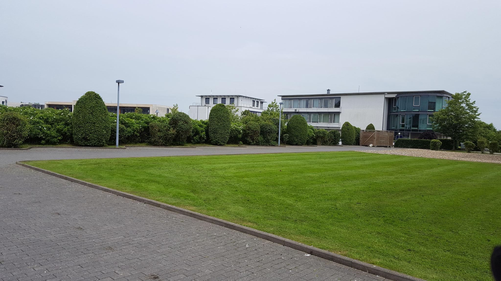 Das Bild zeigt eine gepflegte Außengrünanlage betreut von Gartenpflege Aachen