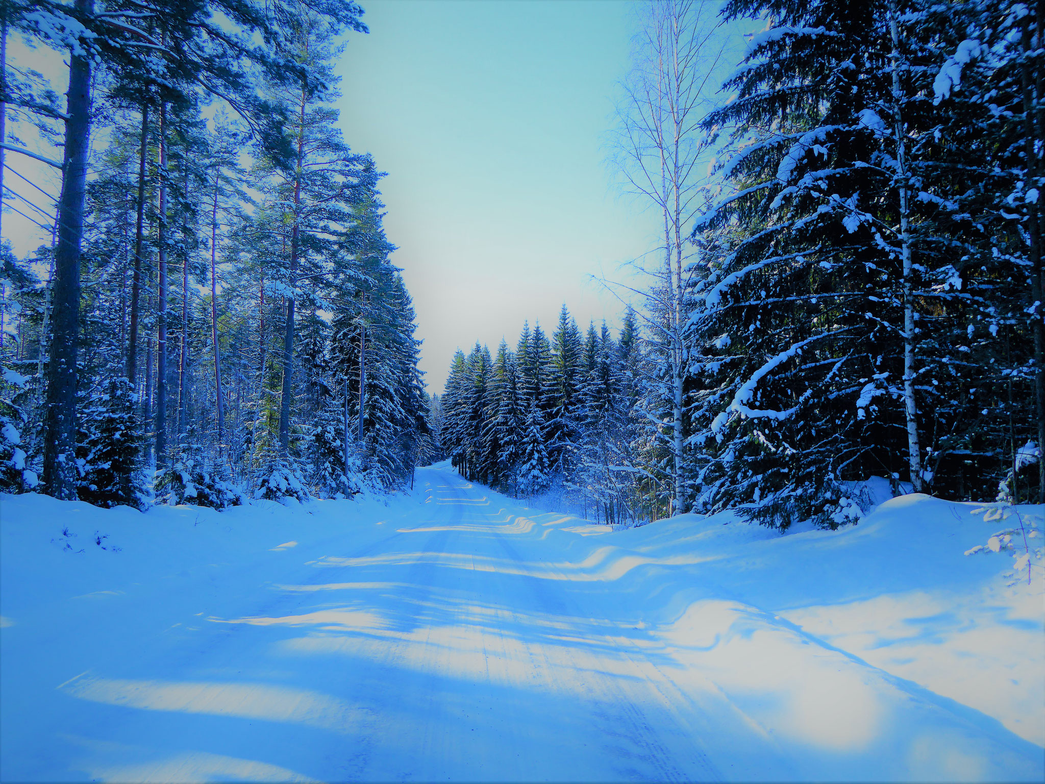 ... and Sysmä area with your All Terrainskies. Snow shoes ...