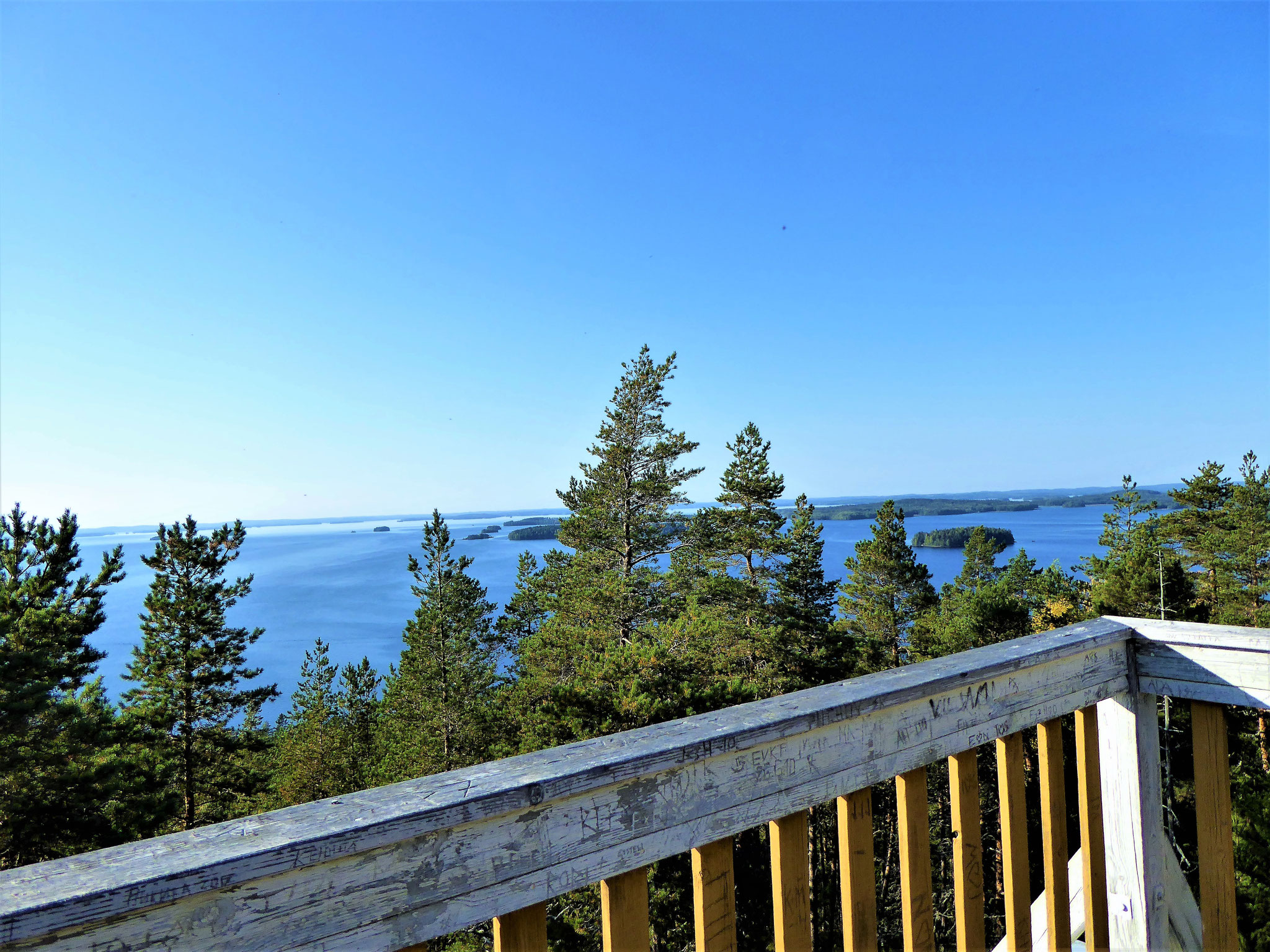 View from the observation tower 1.5 km from the log house. Panorama view included