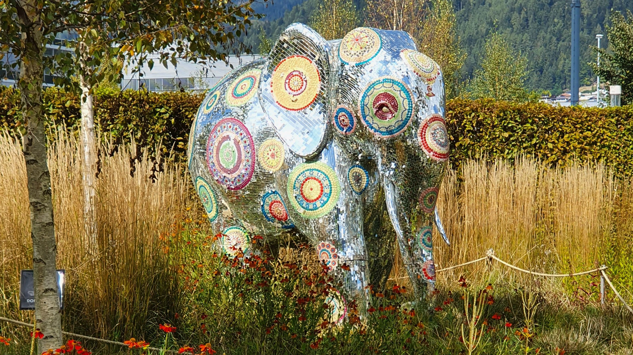 Funkelnder Elefant vom Designer Manish Arora