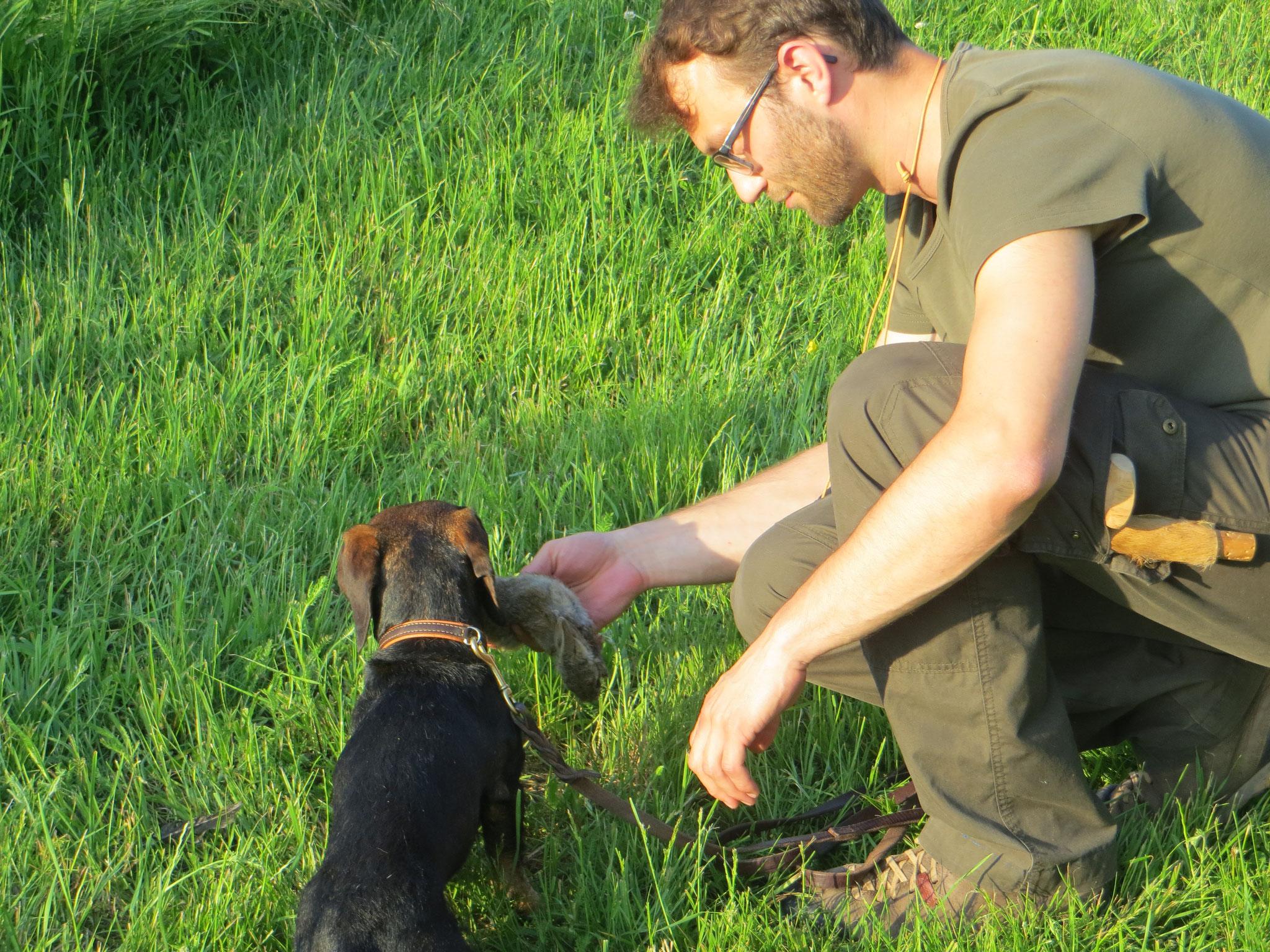 Auch für Teckel Gustav hat sich ein passendes Kanin gefunden.