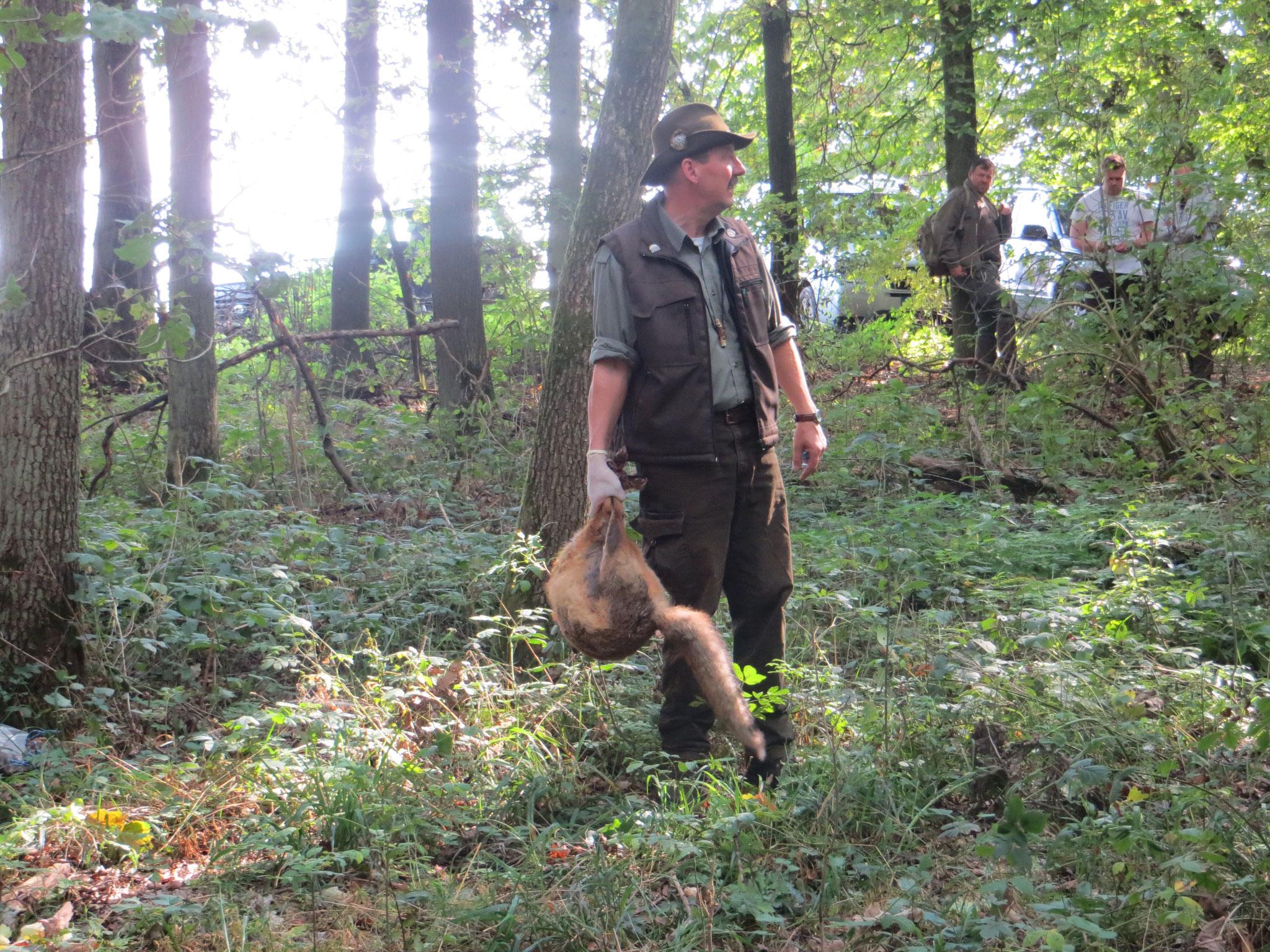 Andreas Deeg bringt den Fuchs ins Hindernis.