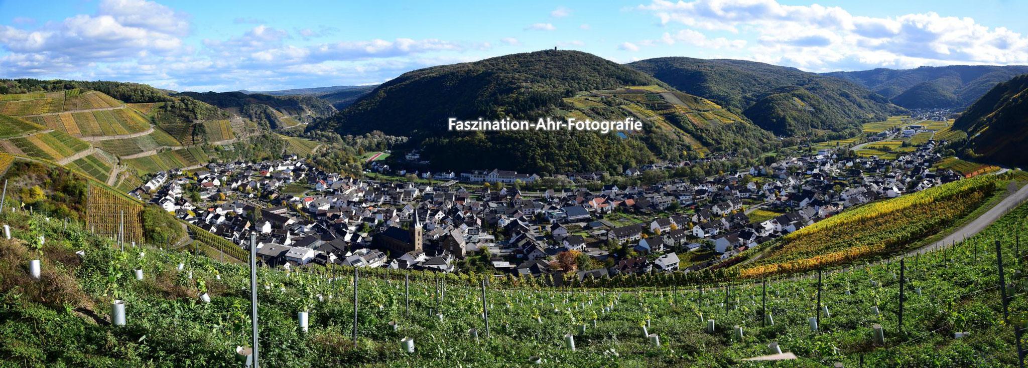 Weinsicht Dernau