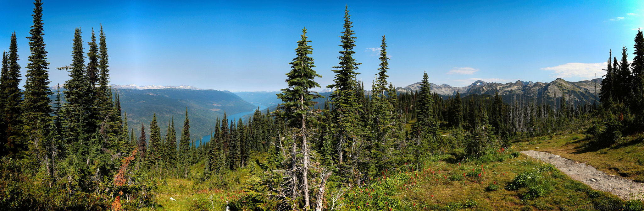 Mt. Revelstoke Nationalpark
