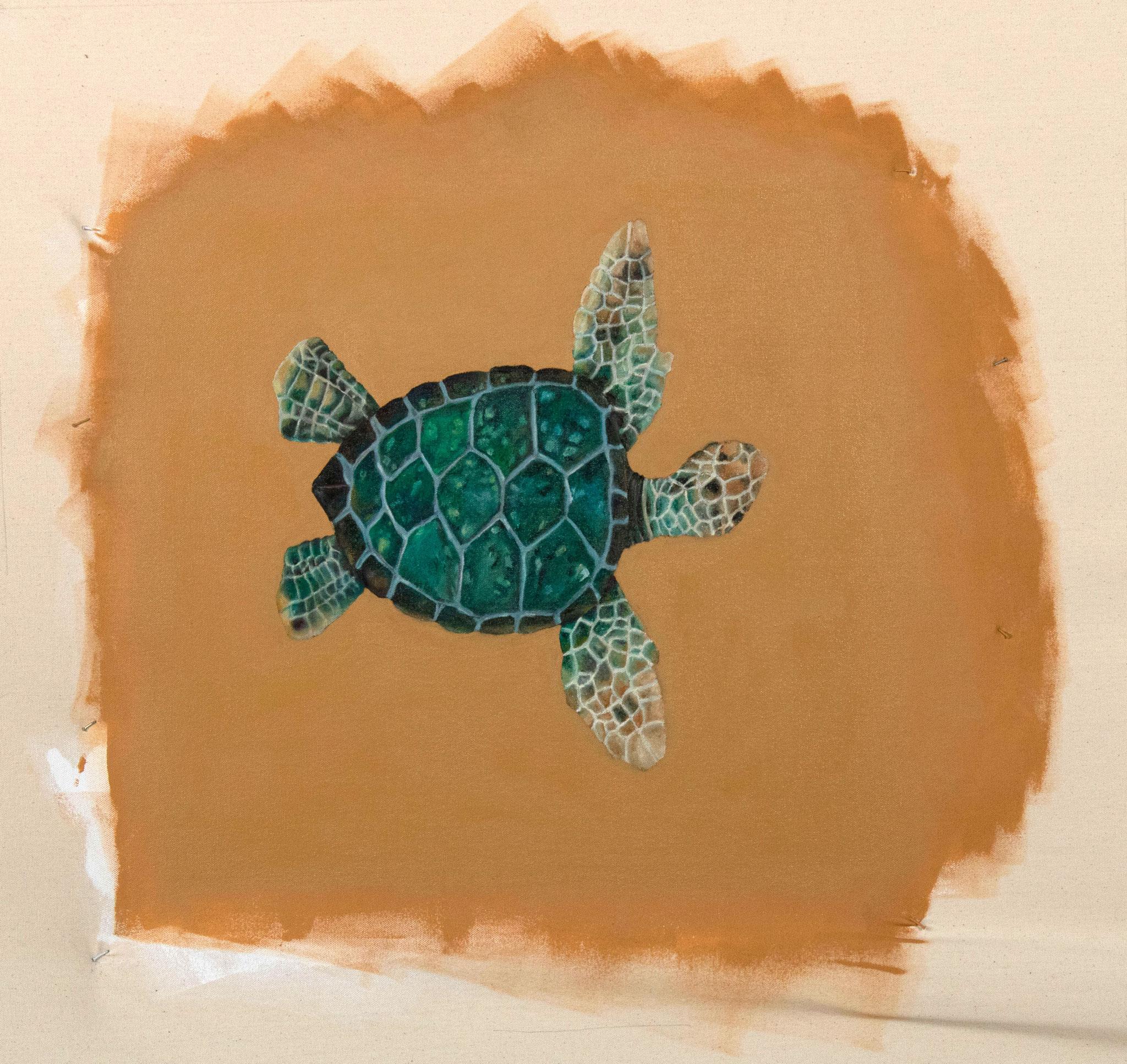 Michael - turtle