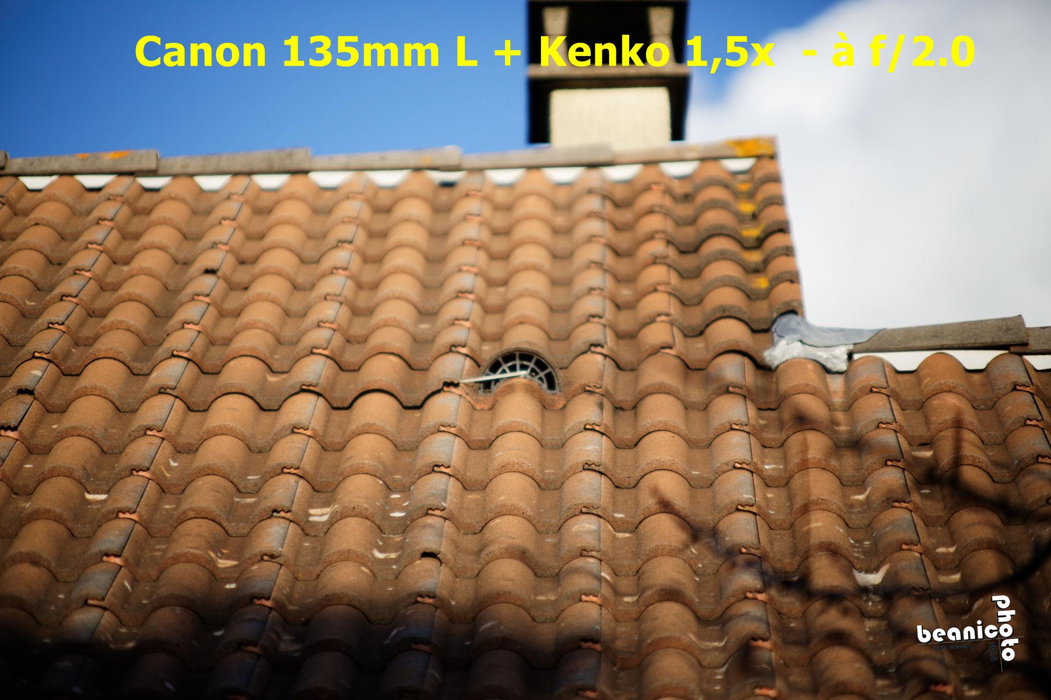 beanico-photo.fr - Canon 5DIII + Canon EF 135mm f/2.0 L USM