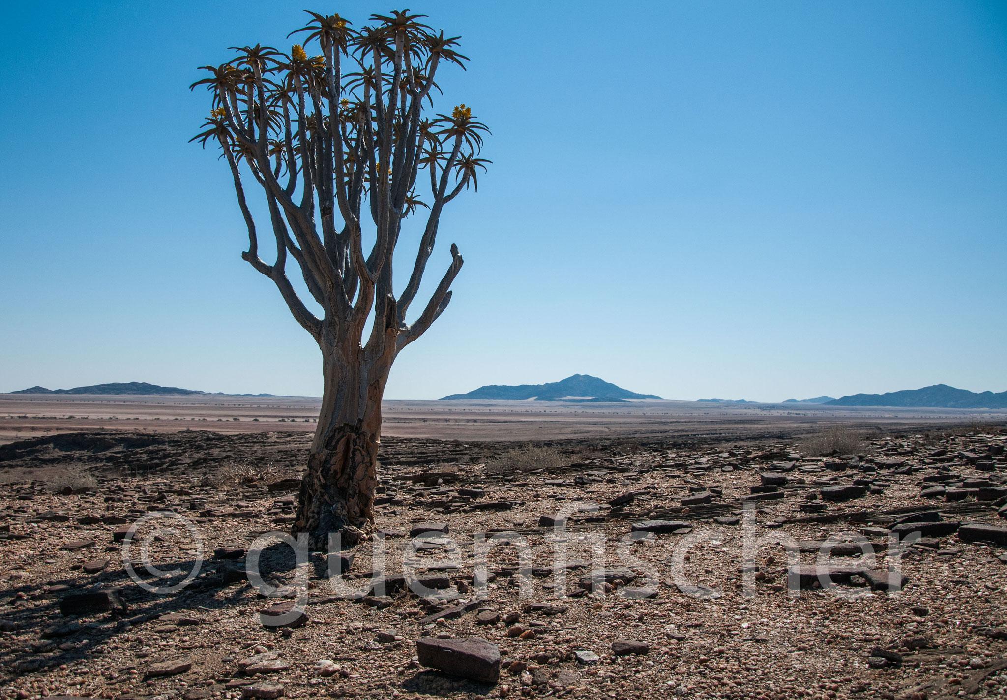 Namibia - 2