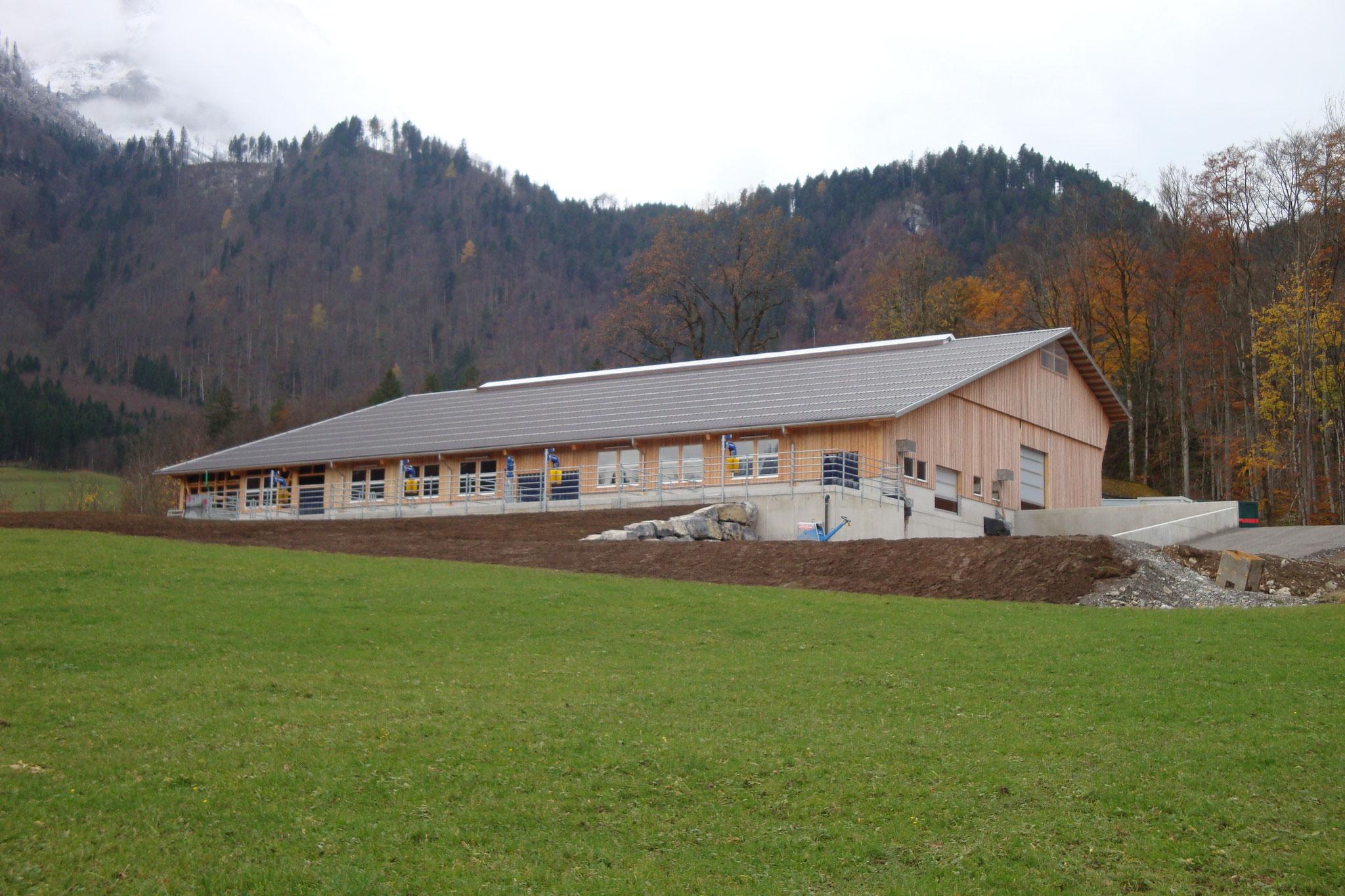 Stallneubau Glarus 2016/2017