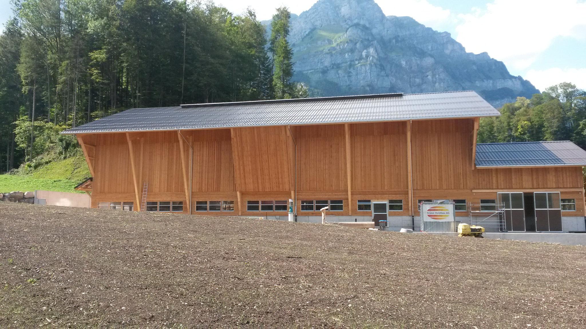 Stallneubau Glarus 2018