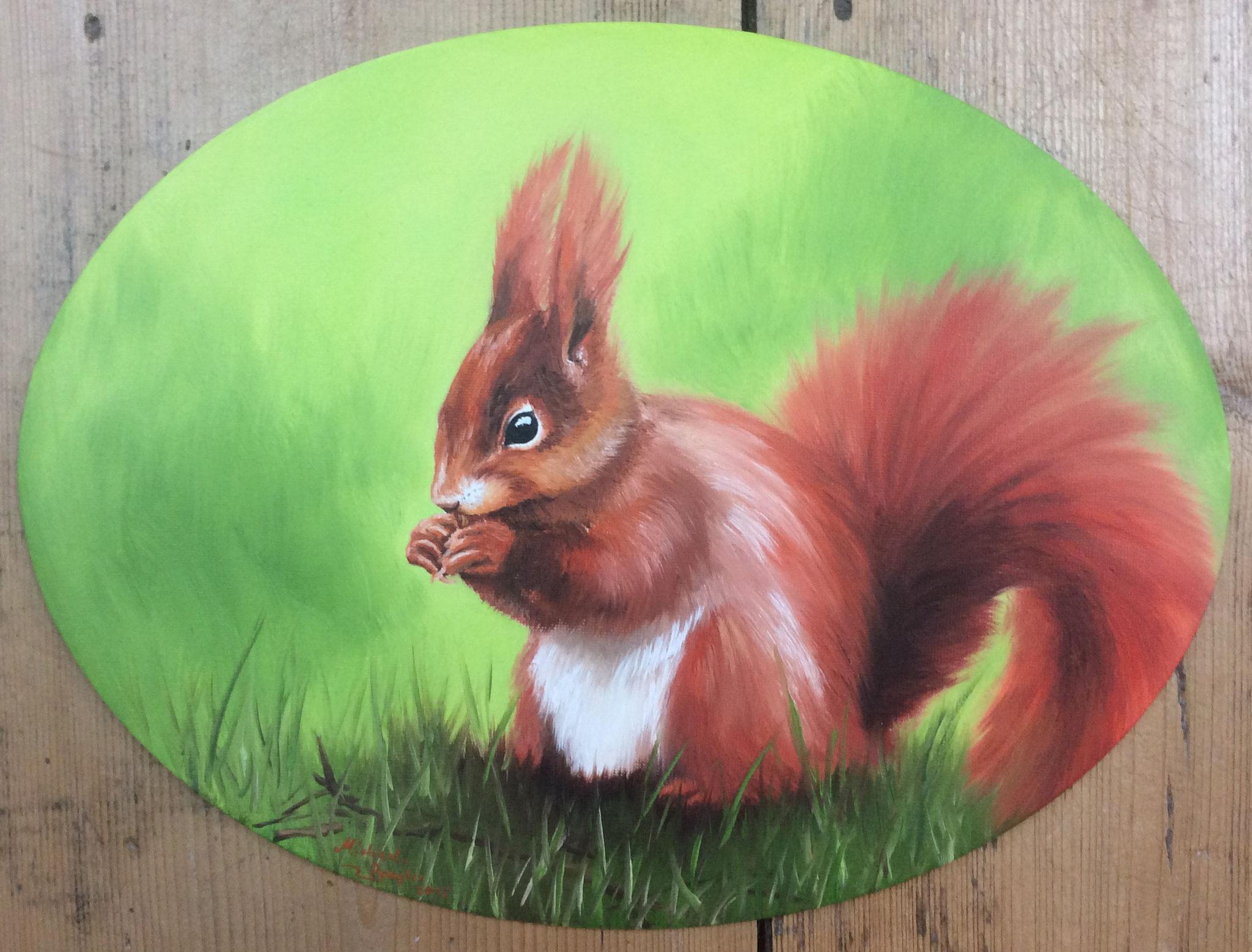 Eichhörnchen im Grünen