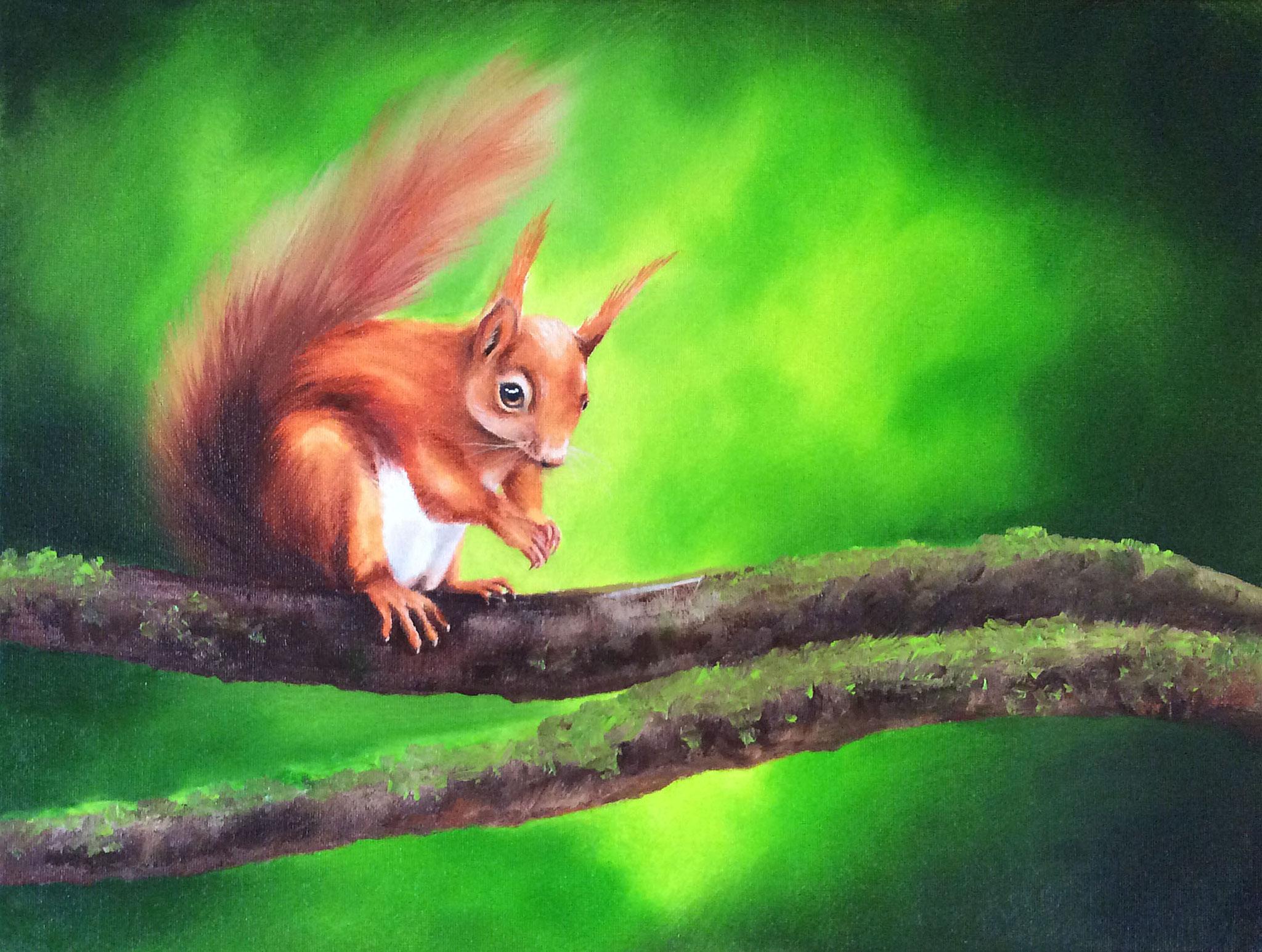 Eichhörnchen auf dem Ast
