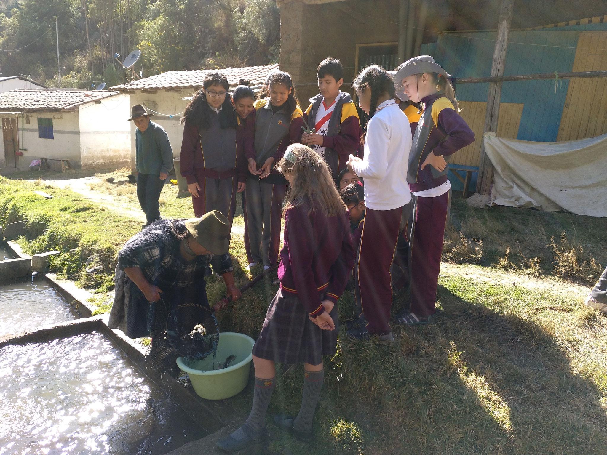 Die Quechua fängt den Fisch. Kurzer Genickbruch und ab in die Pfanne (ohne Innereien natürlich).