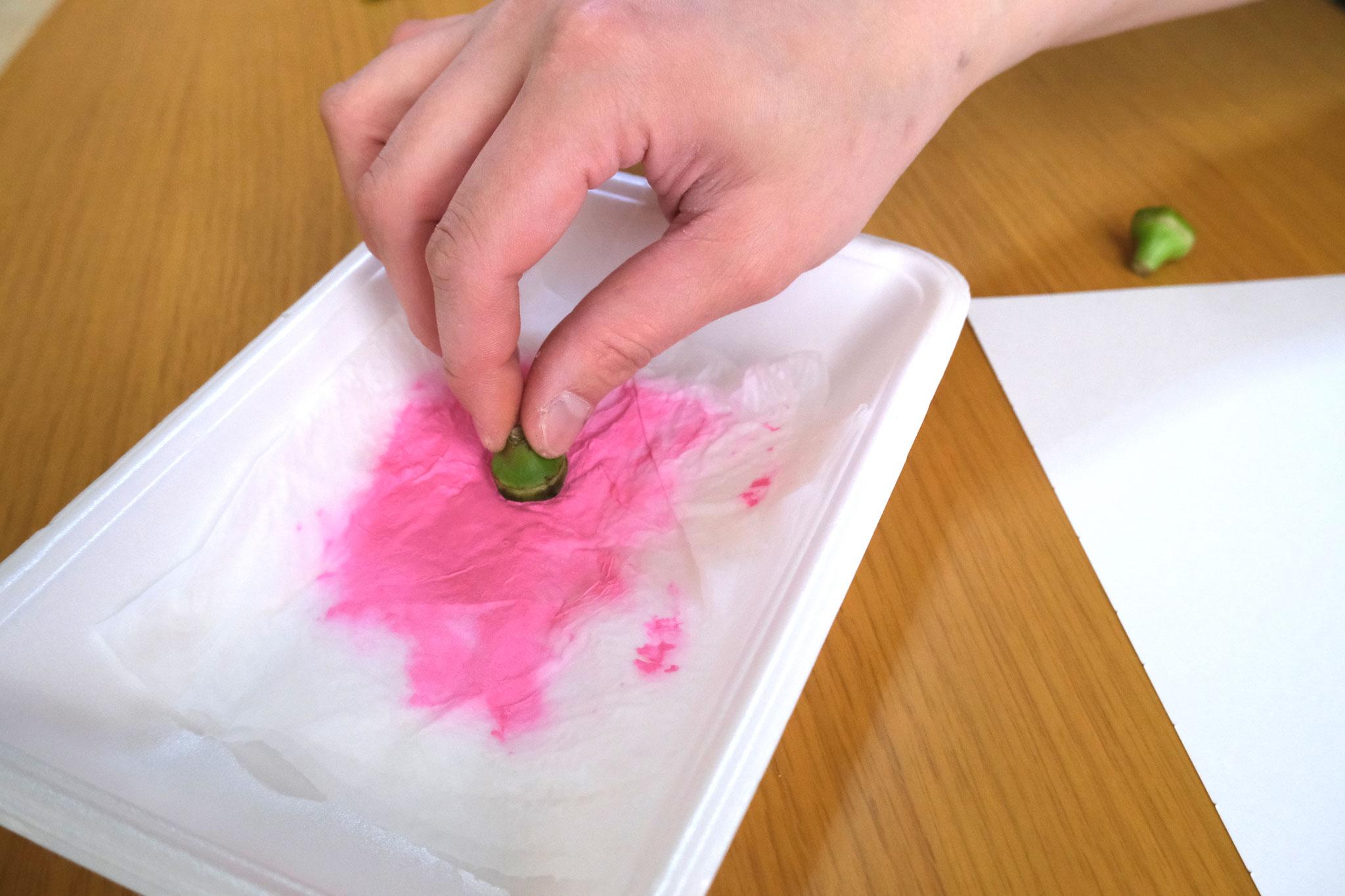 次はオクラの切り口をピンクのスタンプ台につけ