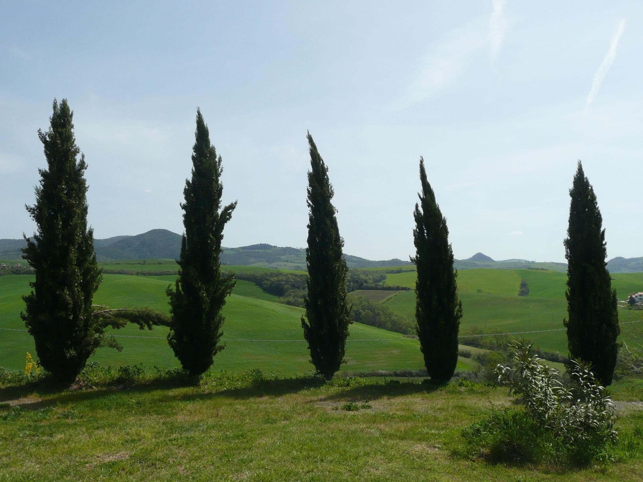 Paysage de Toscane près de Pienza