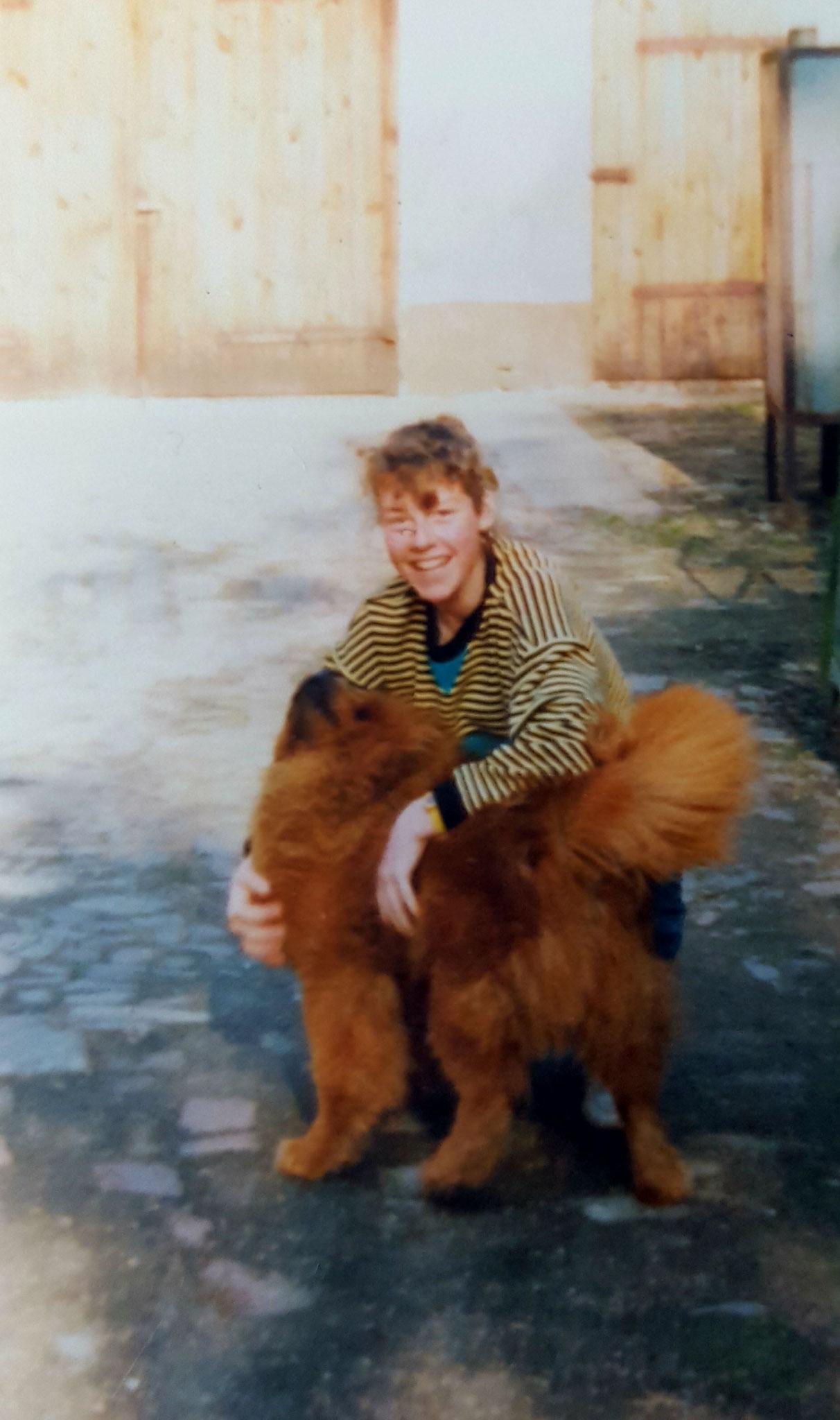 mein erster eigener Hund Chow Chow Duschan von Hel-Schei-Mor