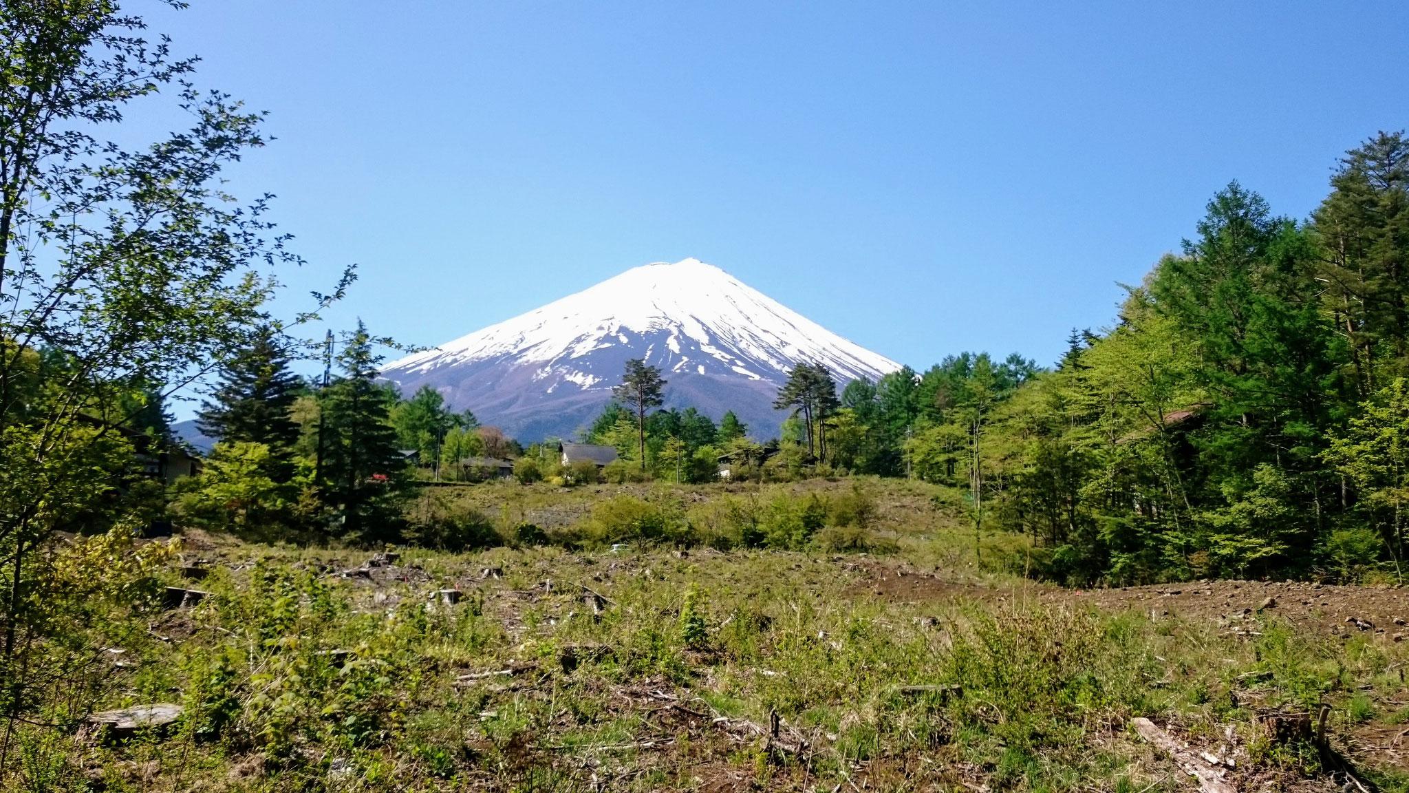 別荘地中央からの富士山