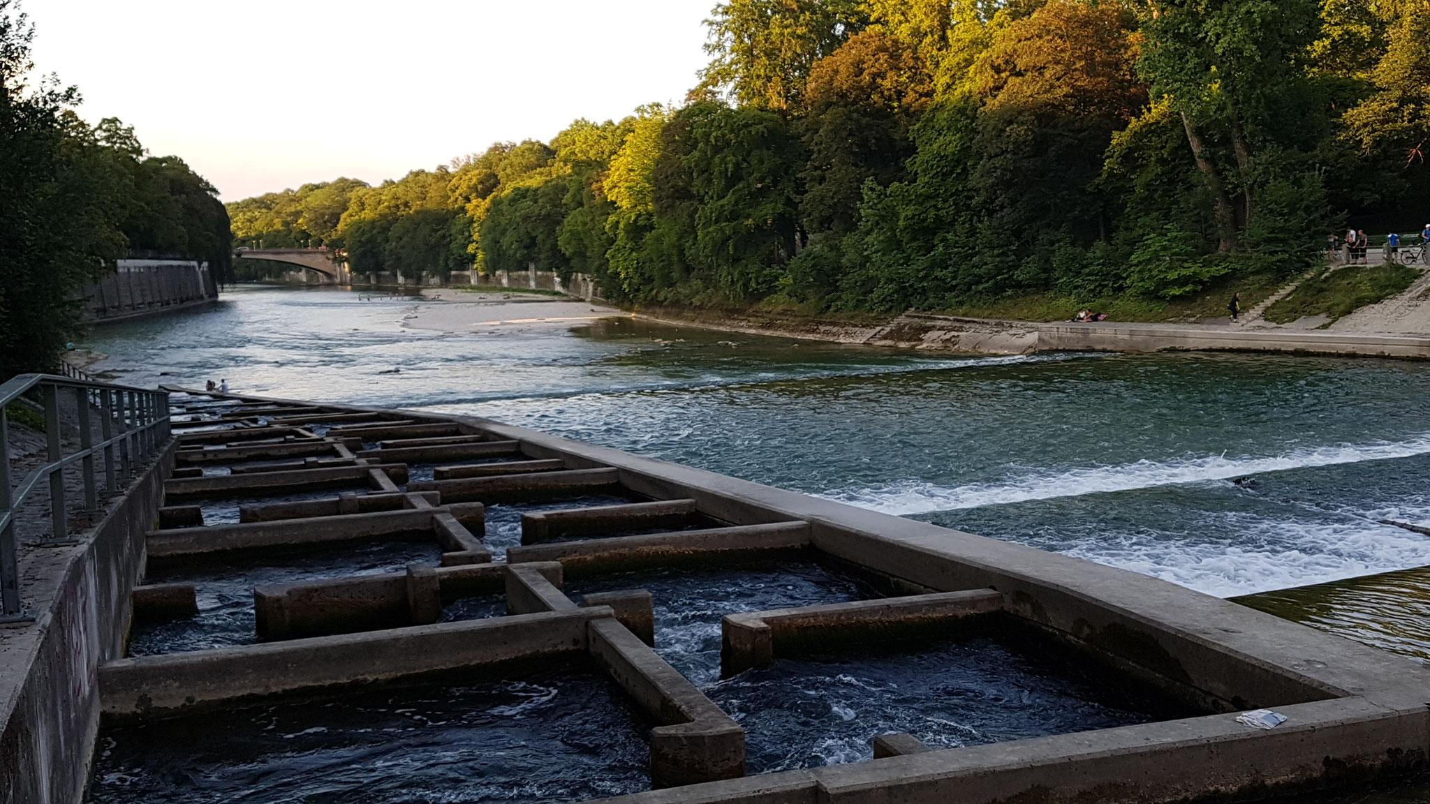 Fischtreppe an der Maximiliansbrücke