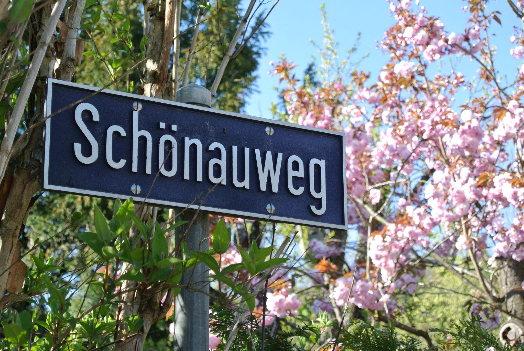 Schönauweg