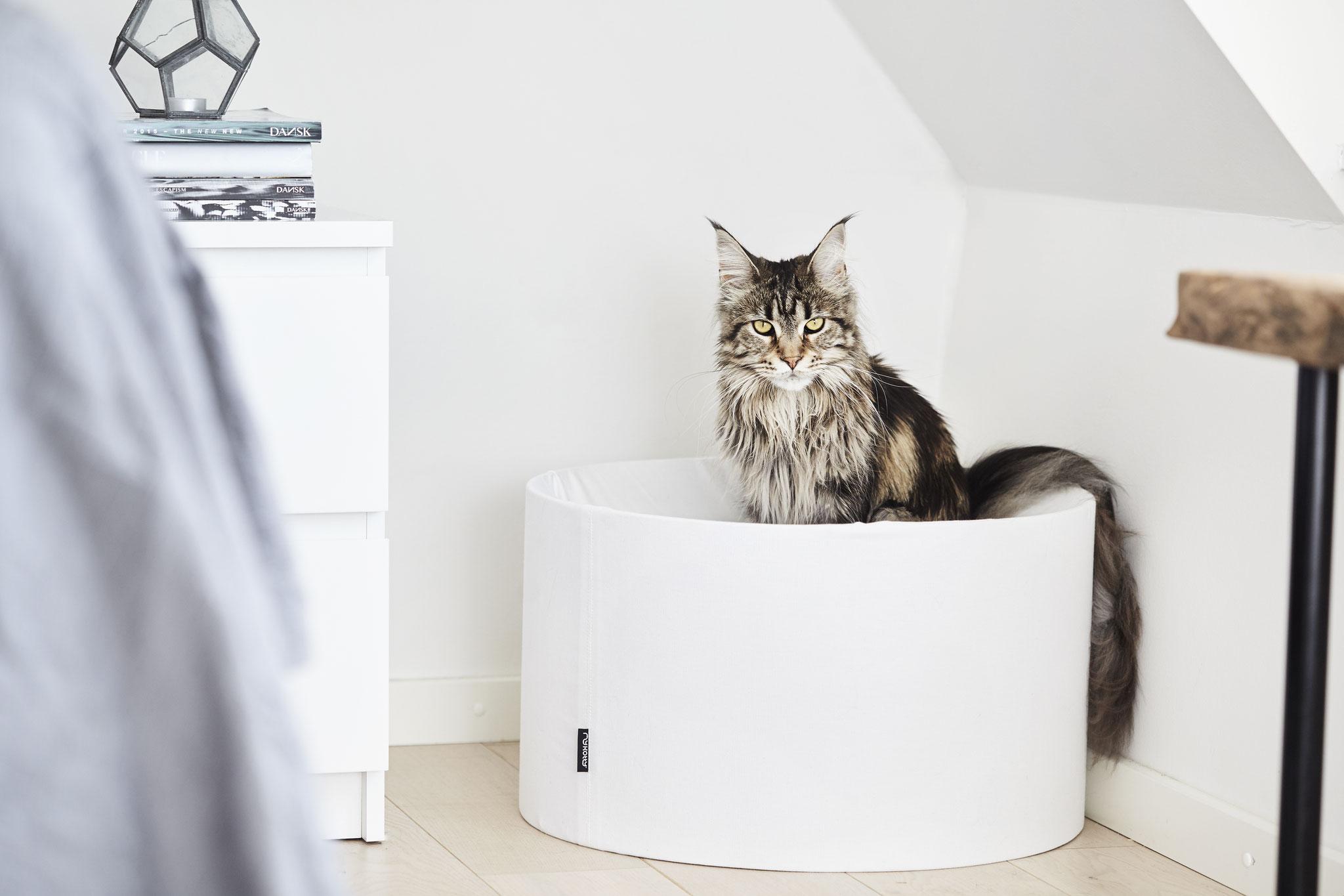 modernes design katzenm bel von mykotty design for cats. Black Bedroom Furniture Sets. Home Design Ideas