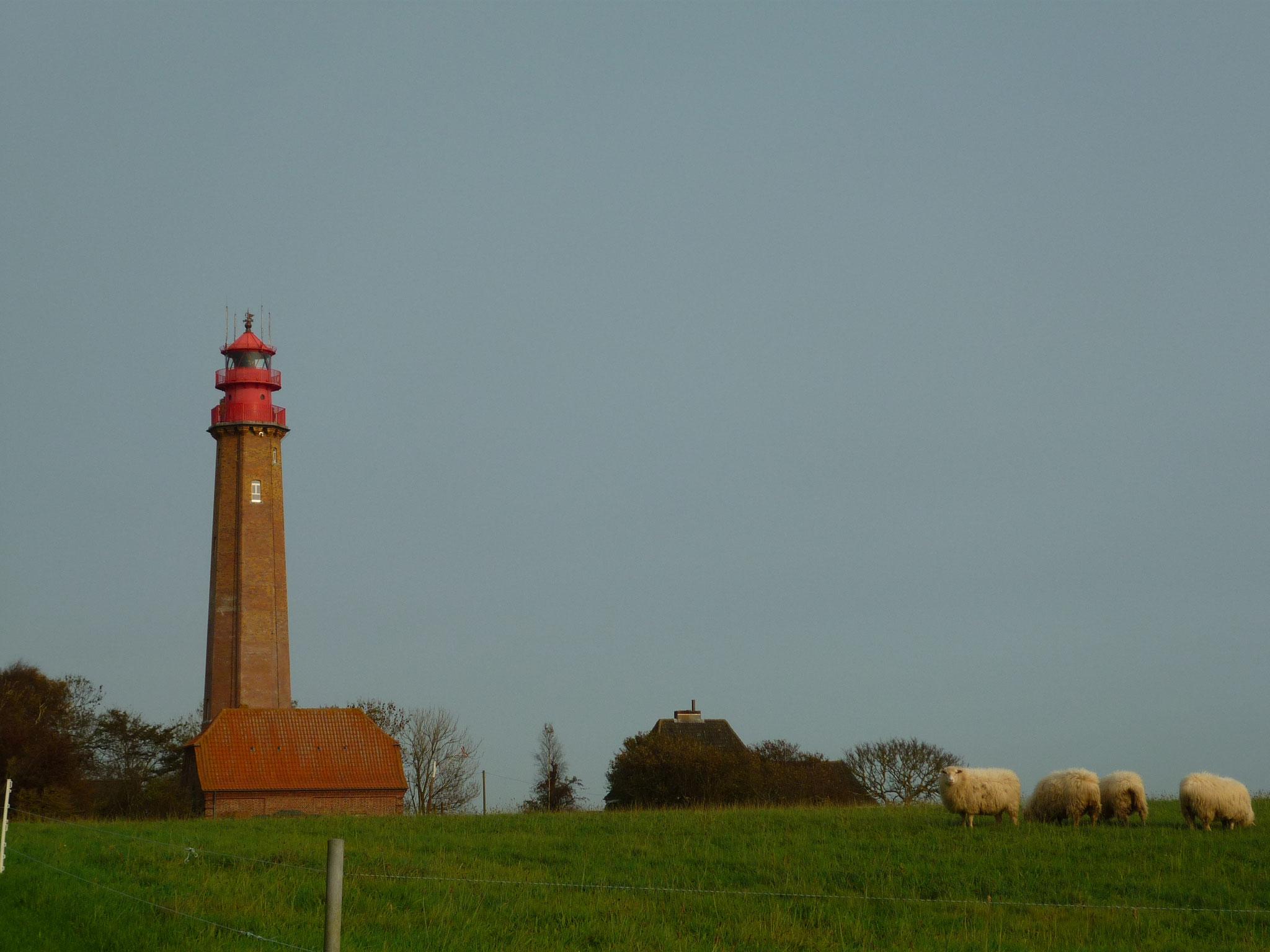 Ausflug zum Flügger Leuchtturm
