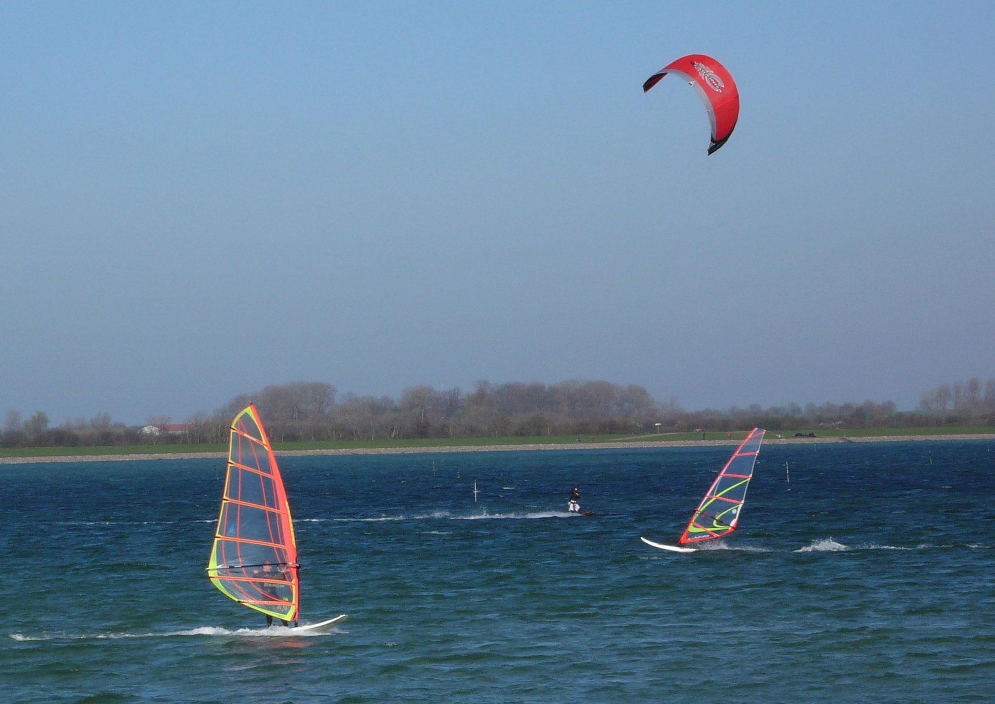 Windsurfing und Kitesurfing im Fehmarnsund