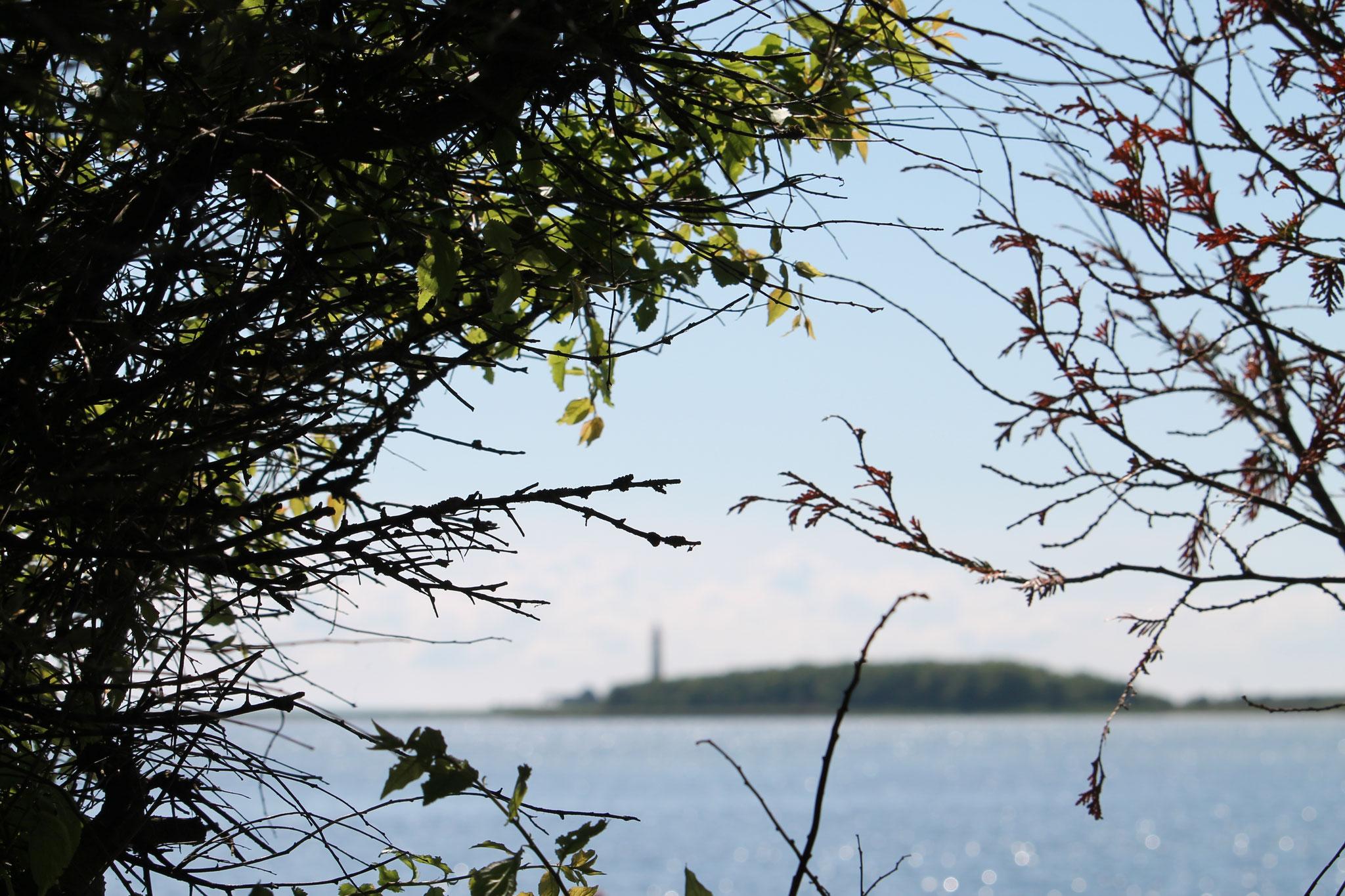 Meeresidylle, Hafen Orth auf Fehmarn