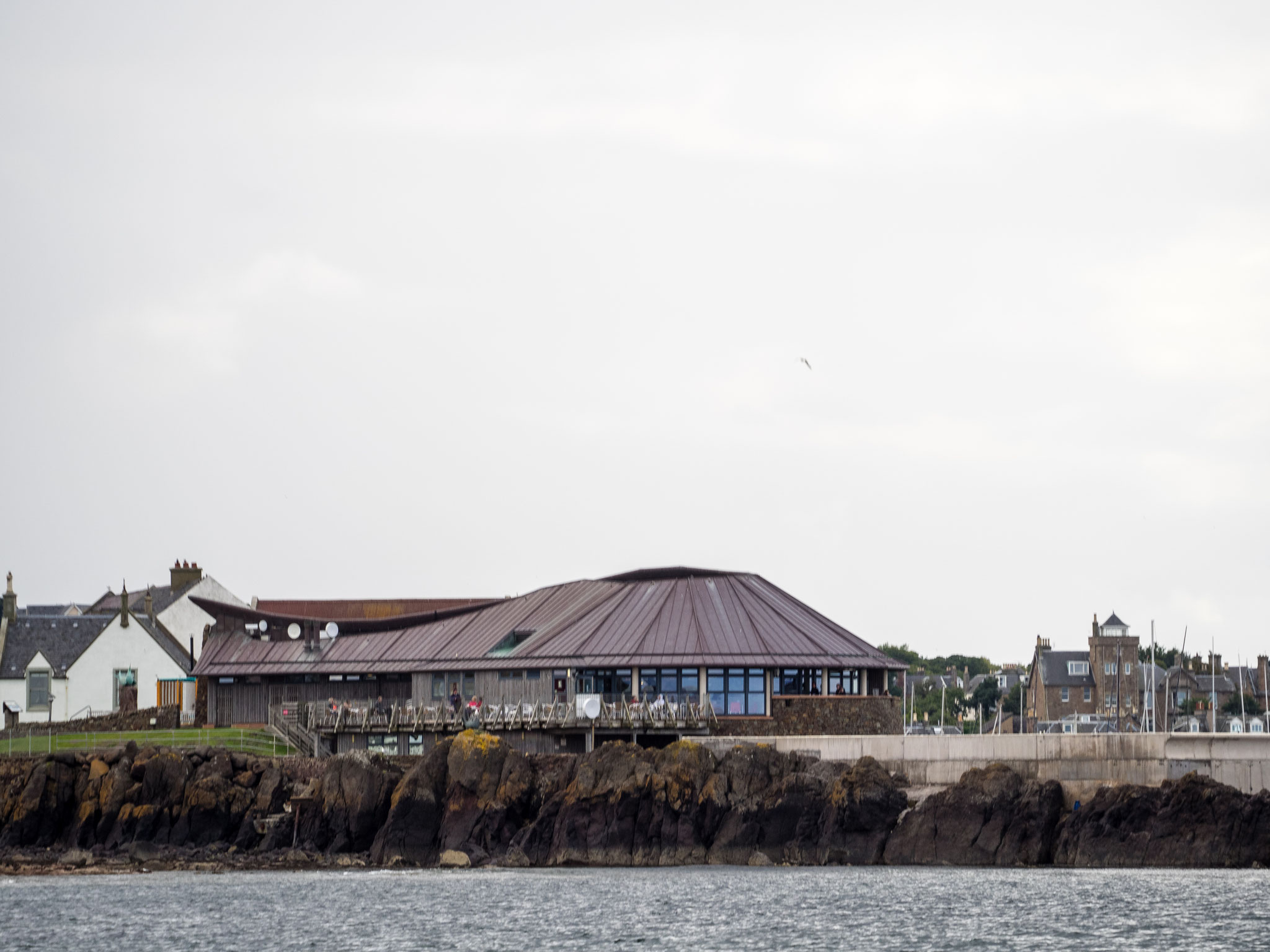 Bild: Scottish Seabird Centre