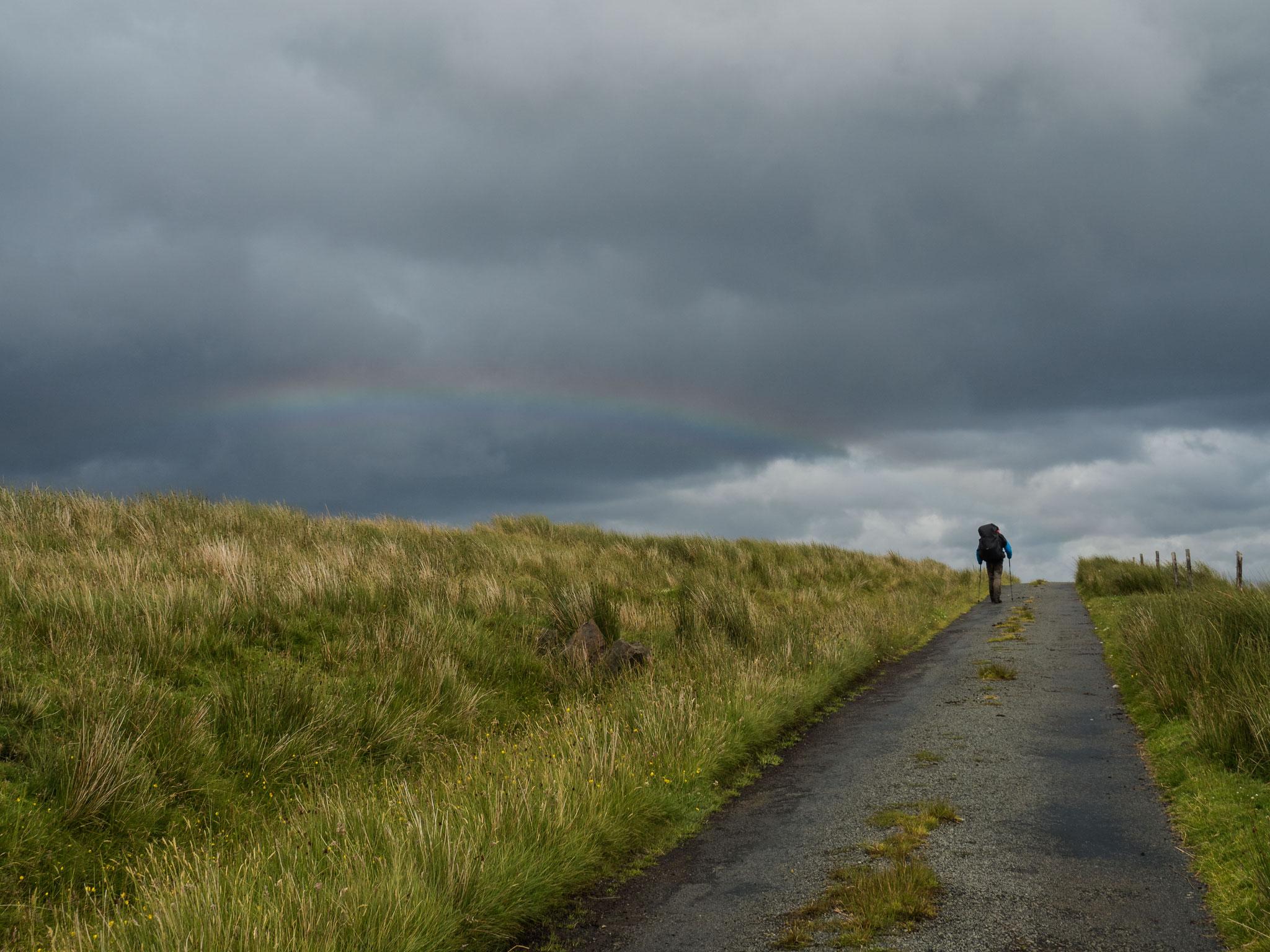 Bild: Regenbogen