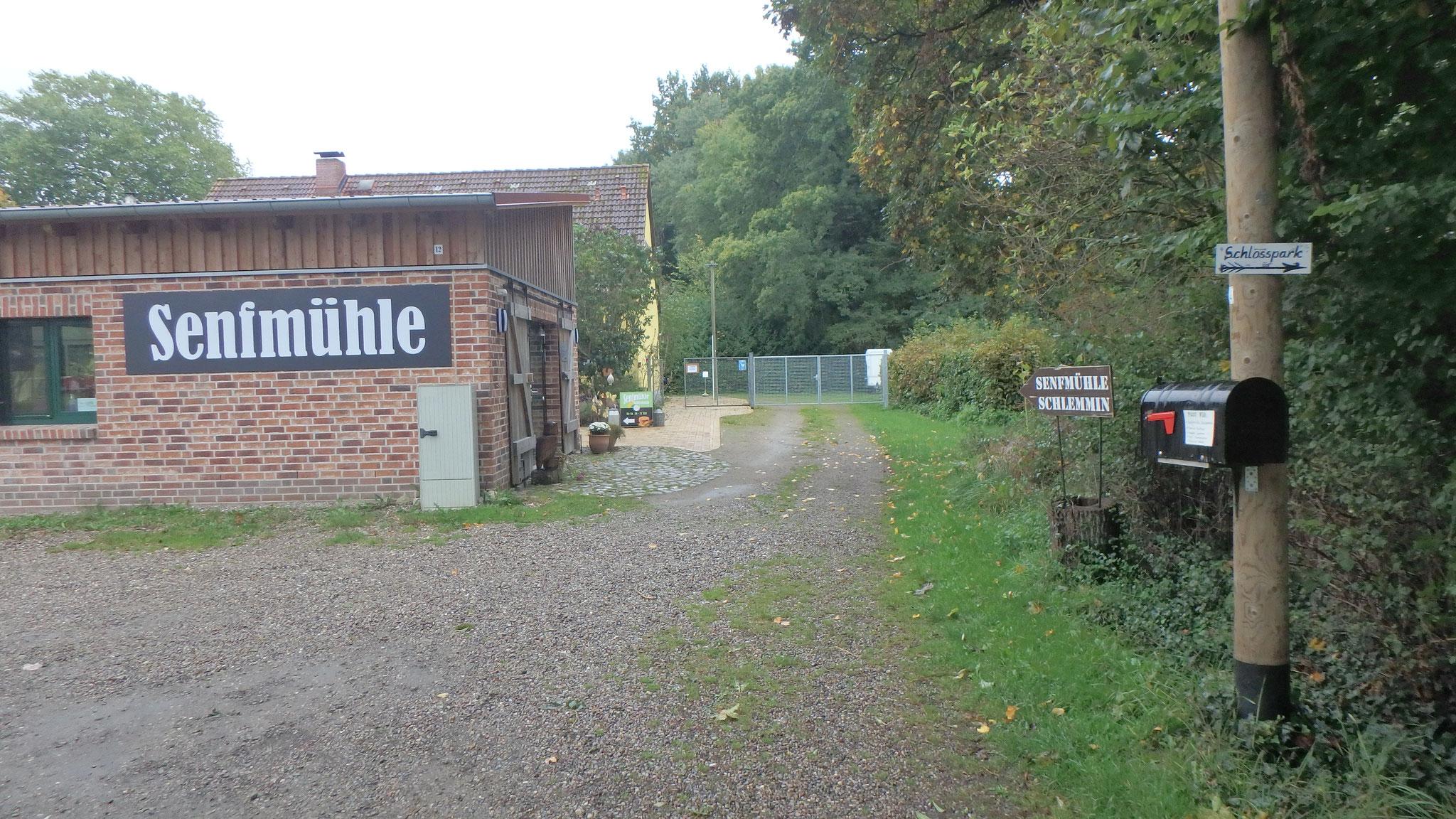 Senfmühle Schlemmin