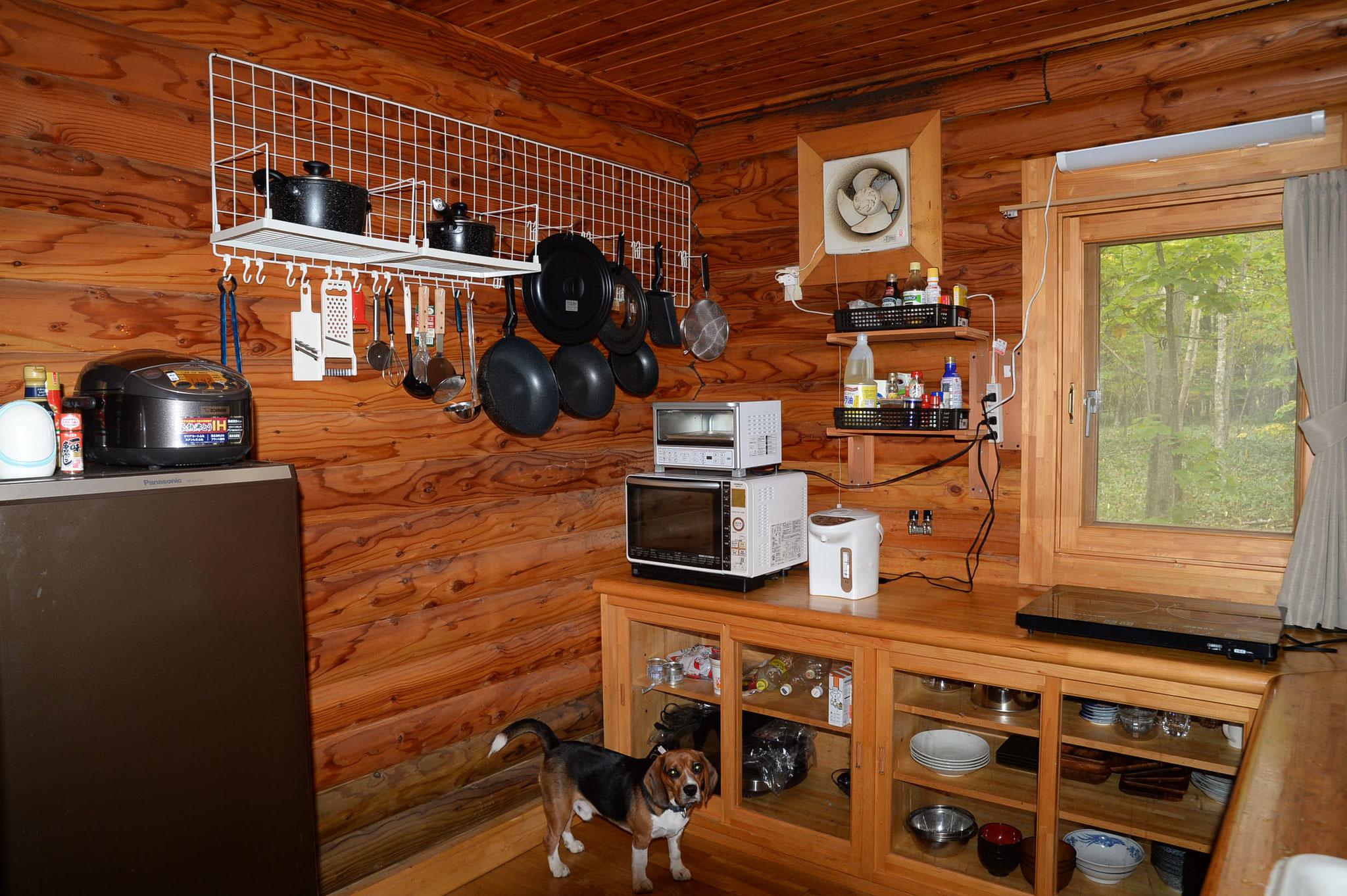 キッチン;調理に必要な物は全部揃ってます。ジョンのお気に入りの場所です。
