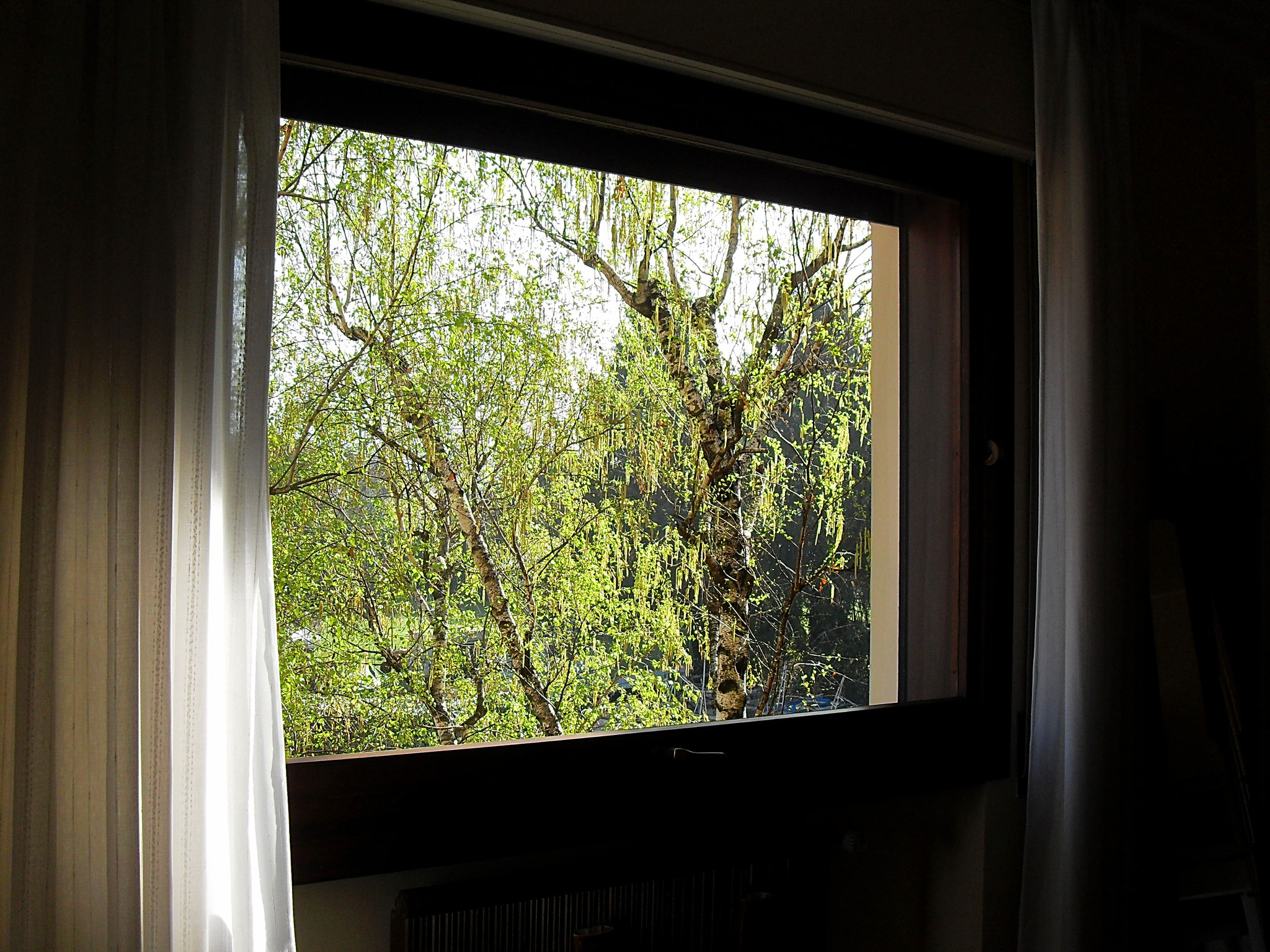 Bedroom. In the morning it's nice to wake up to the birdsong!
