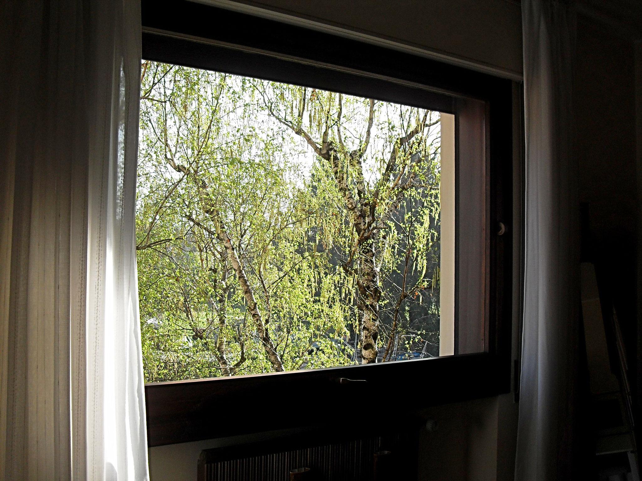 Schlafzimmer: Fenster. Am Morgen ist es schön, mit dem Vogelgesang aufzuwachen!