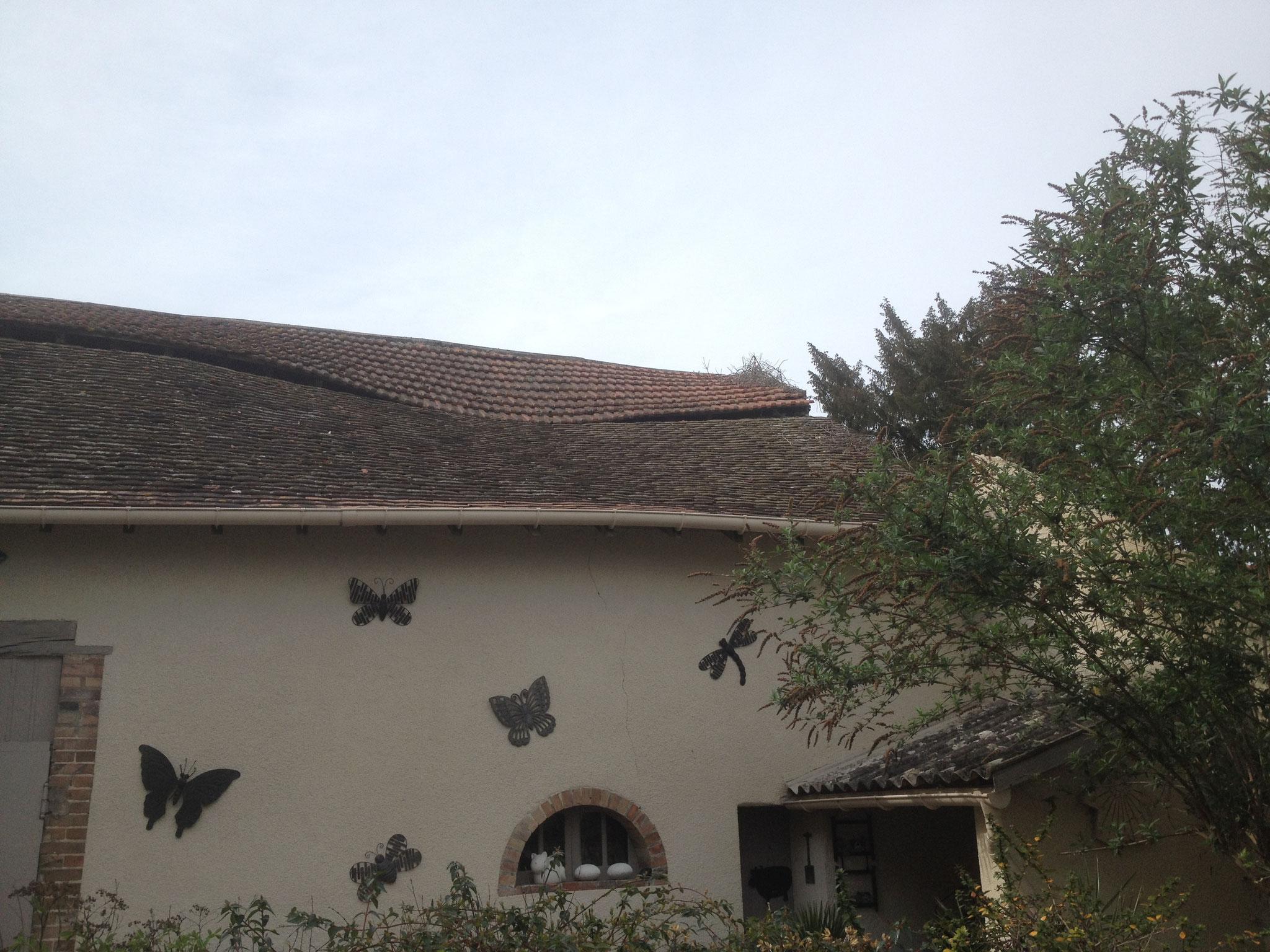 Altération de la charpente : charpente cassée, toit déformé