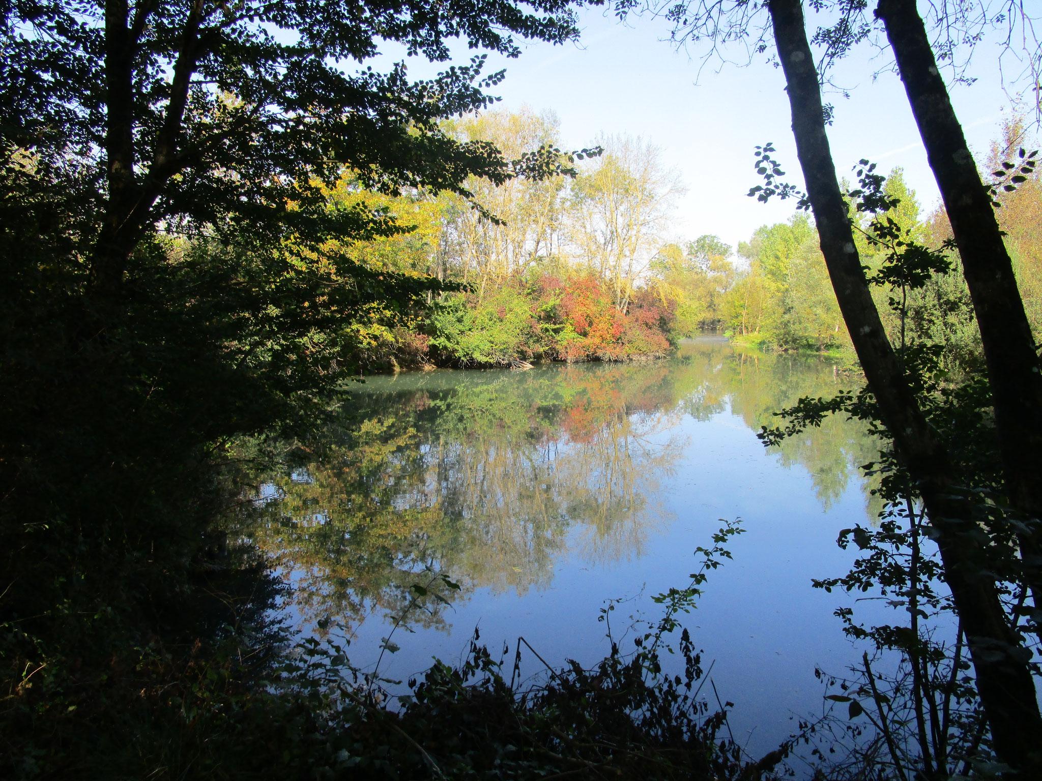 Delta de l'Espincey avec confluence avec la Seine à l'horizon sur la commune de Savières