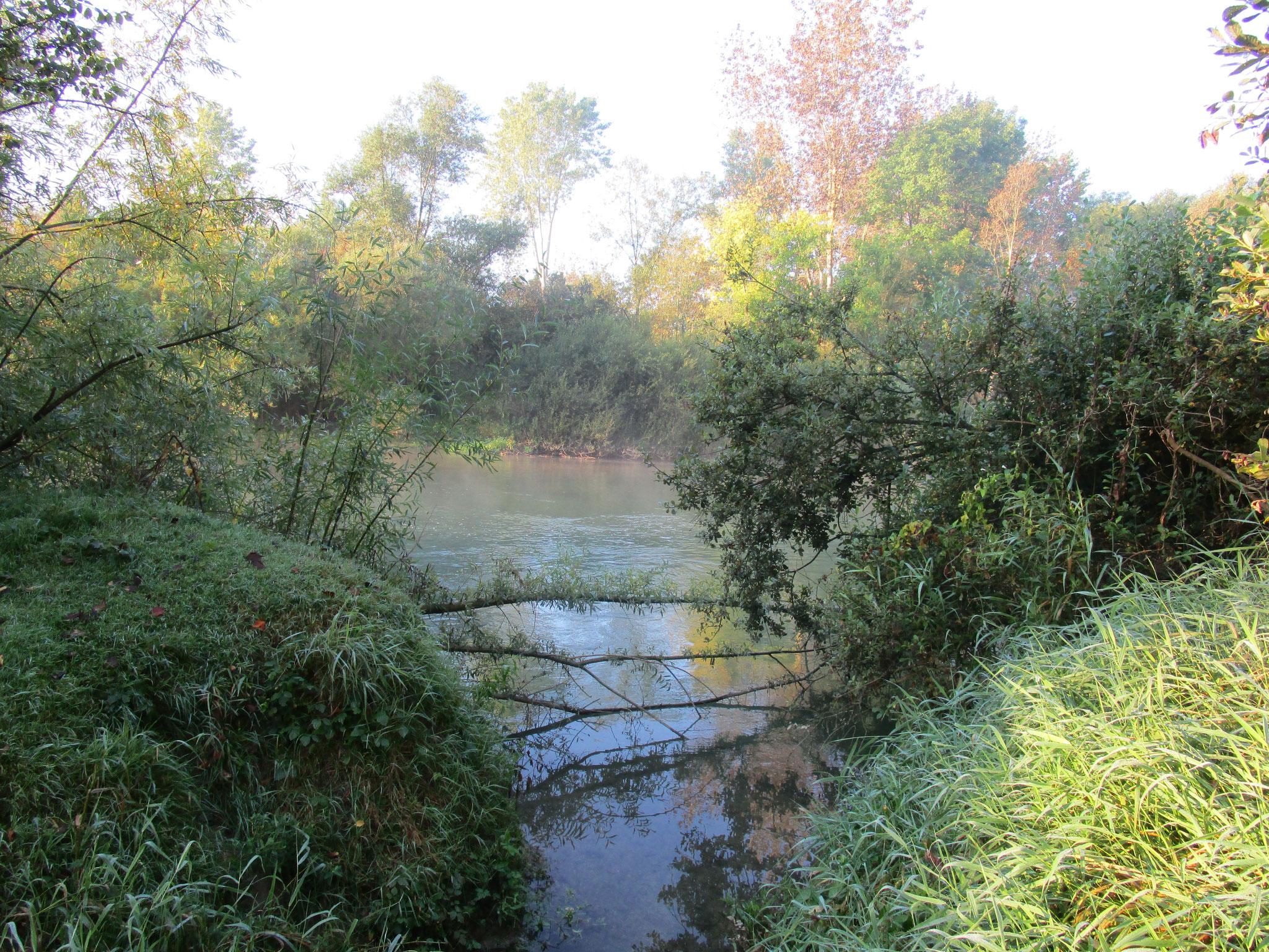 Vue sur la confluence rivière du Maure et Seine