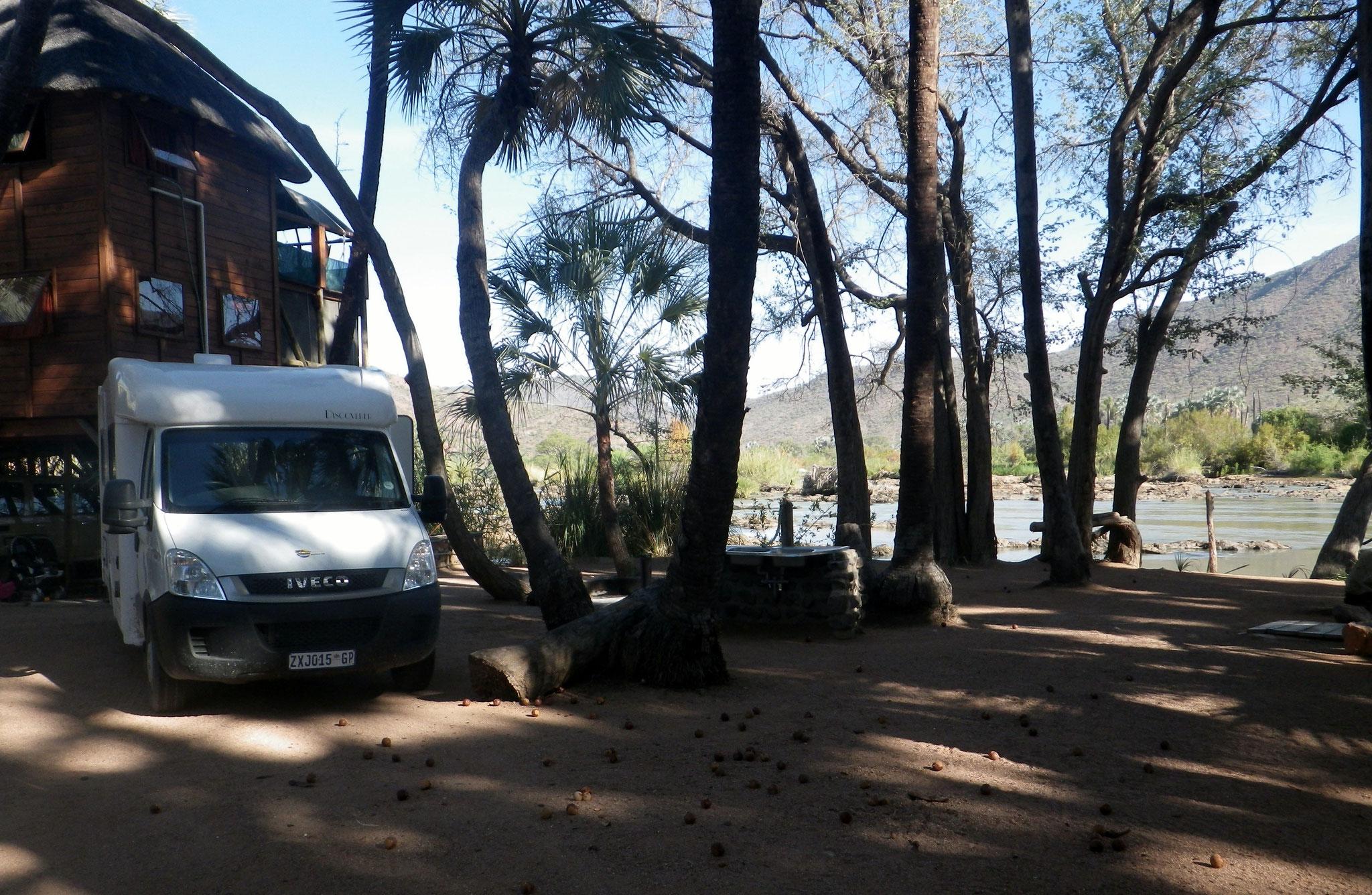 Unter Palmen am Kunene