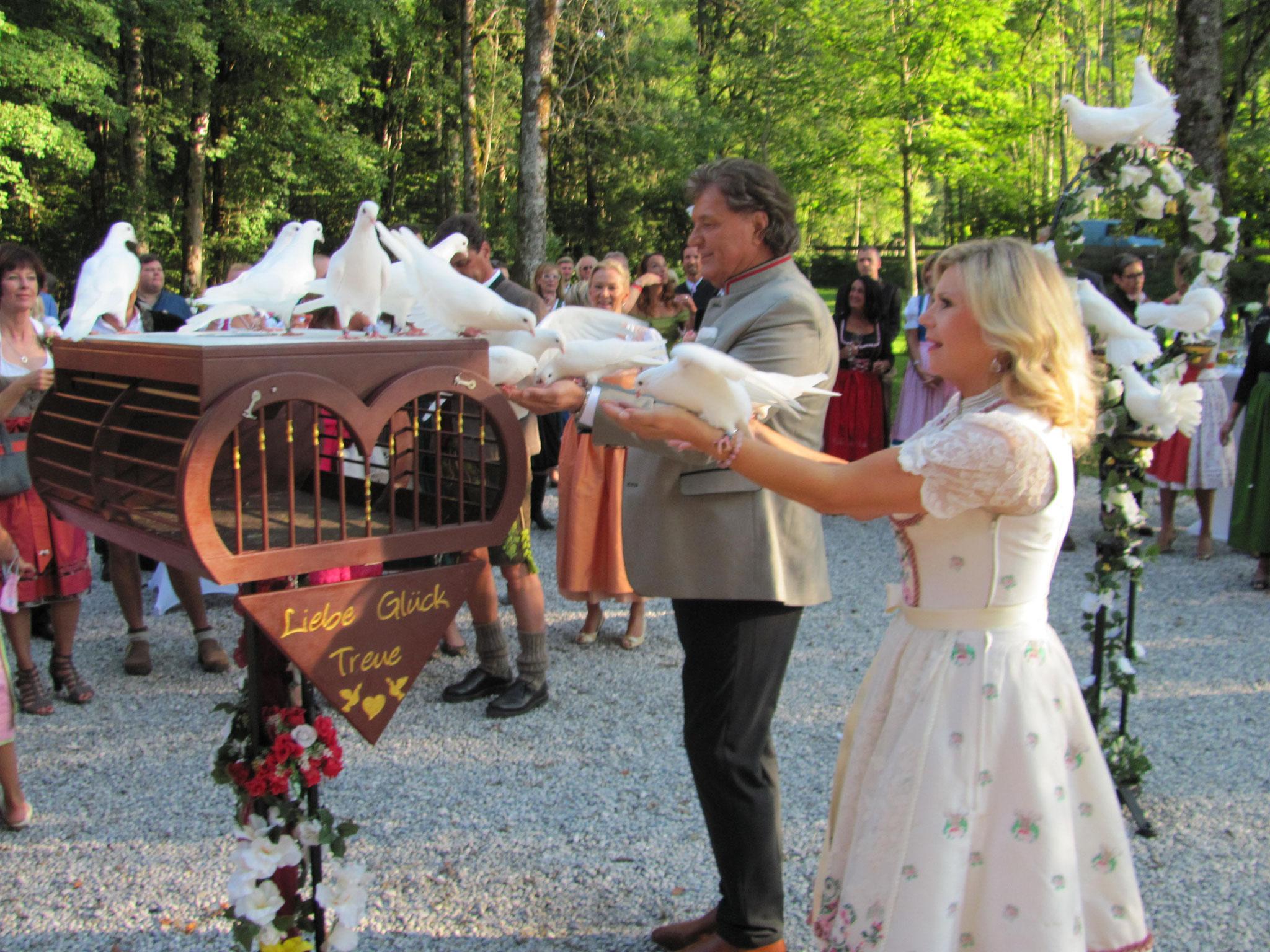 die weißen Tauben kommen zum Brautpaar auf die Hand
