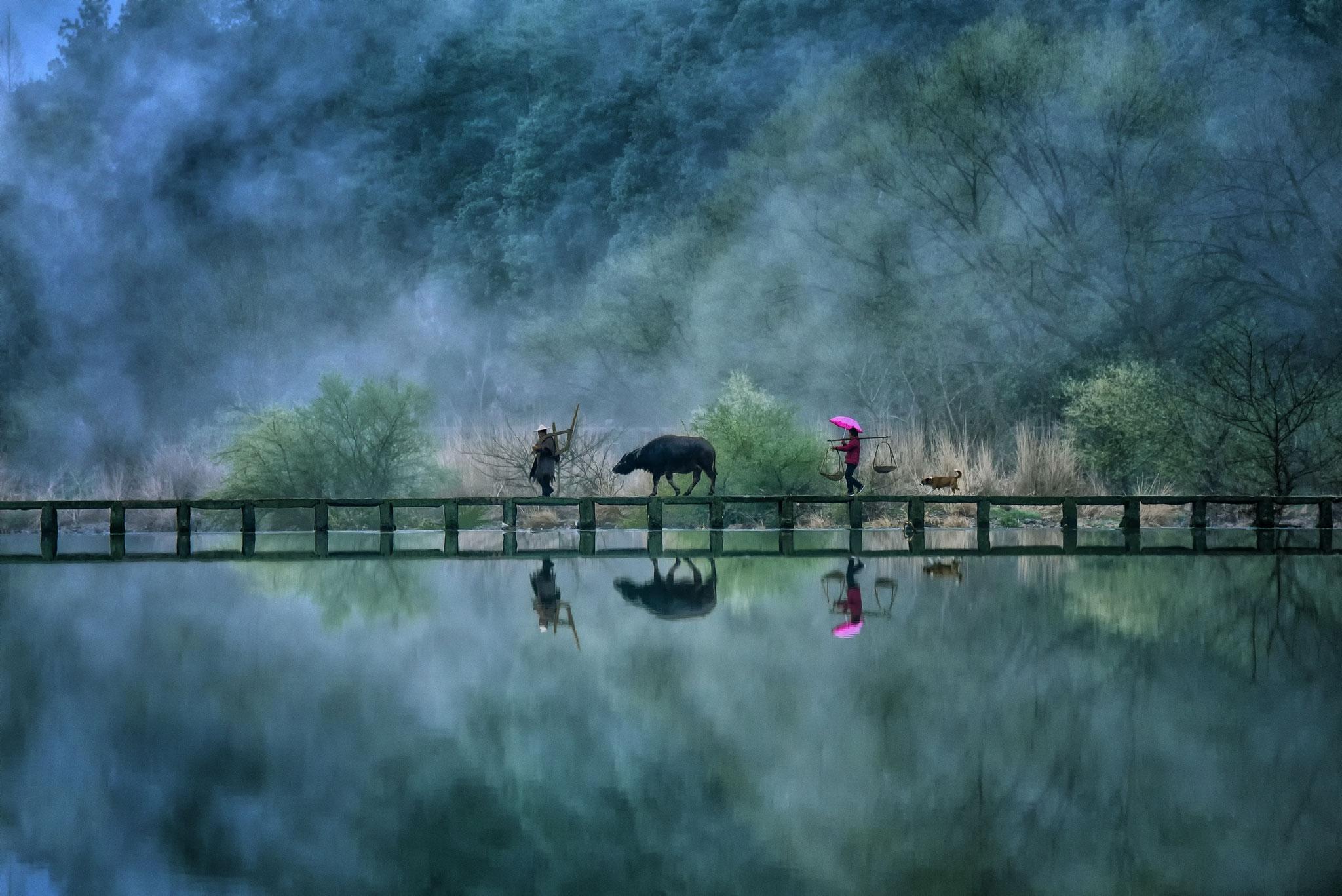Steven Yee (Singapore) - The Farmer Returns