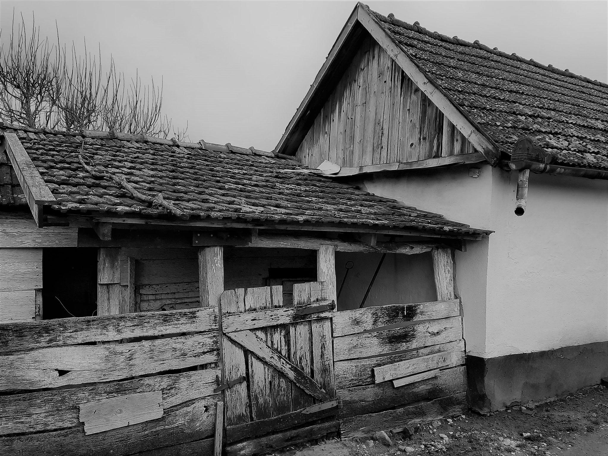 Foto: Körösi Mátyás Zoltán (Sălard/ Szalárd)