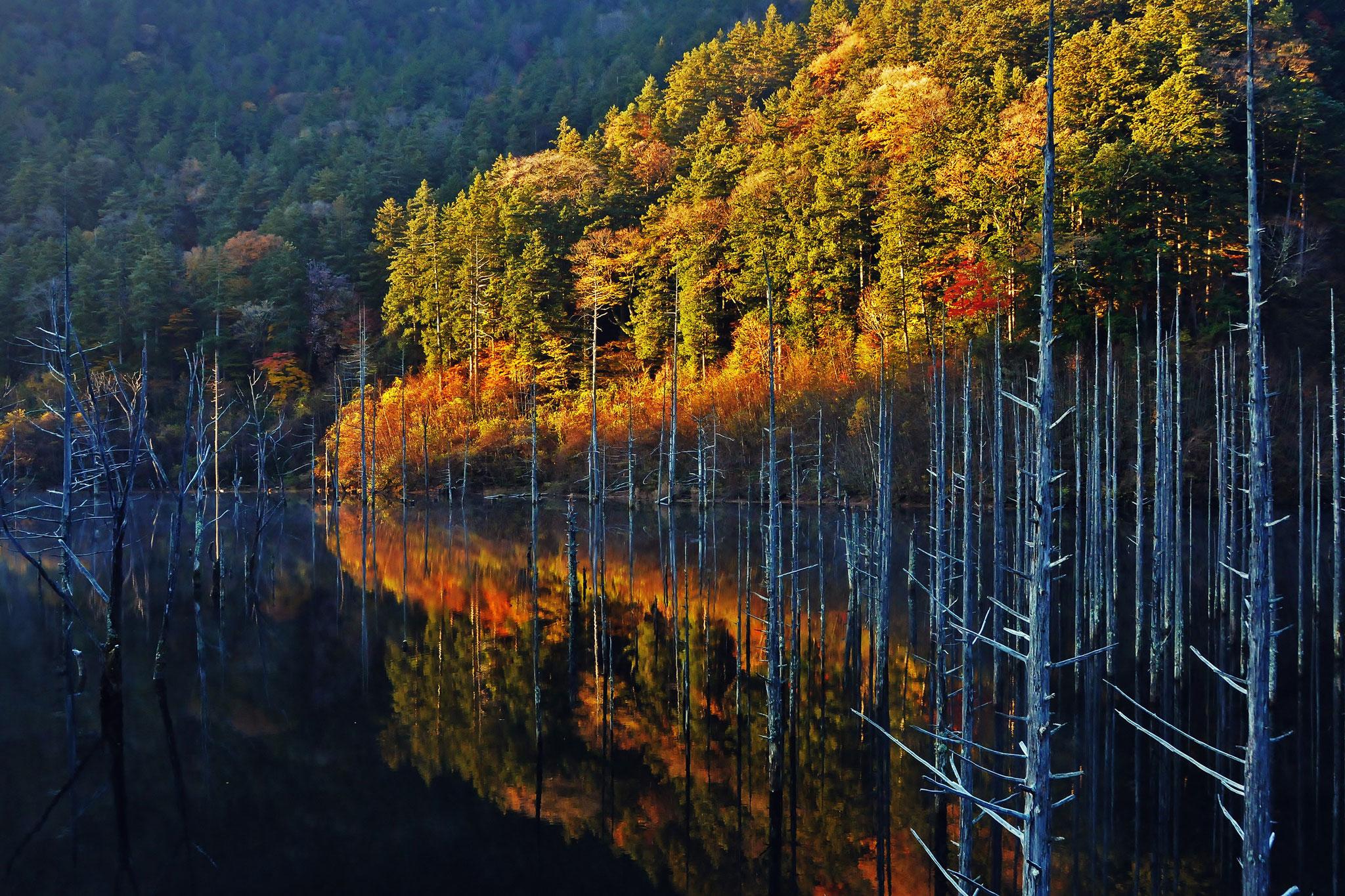 Kawano  Katsushige (japan) - Flowing colours of autumn