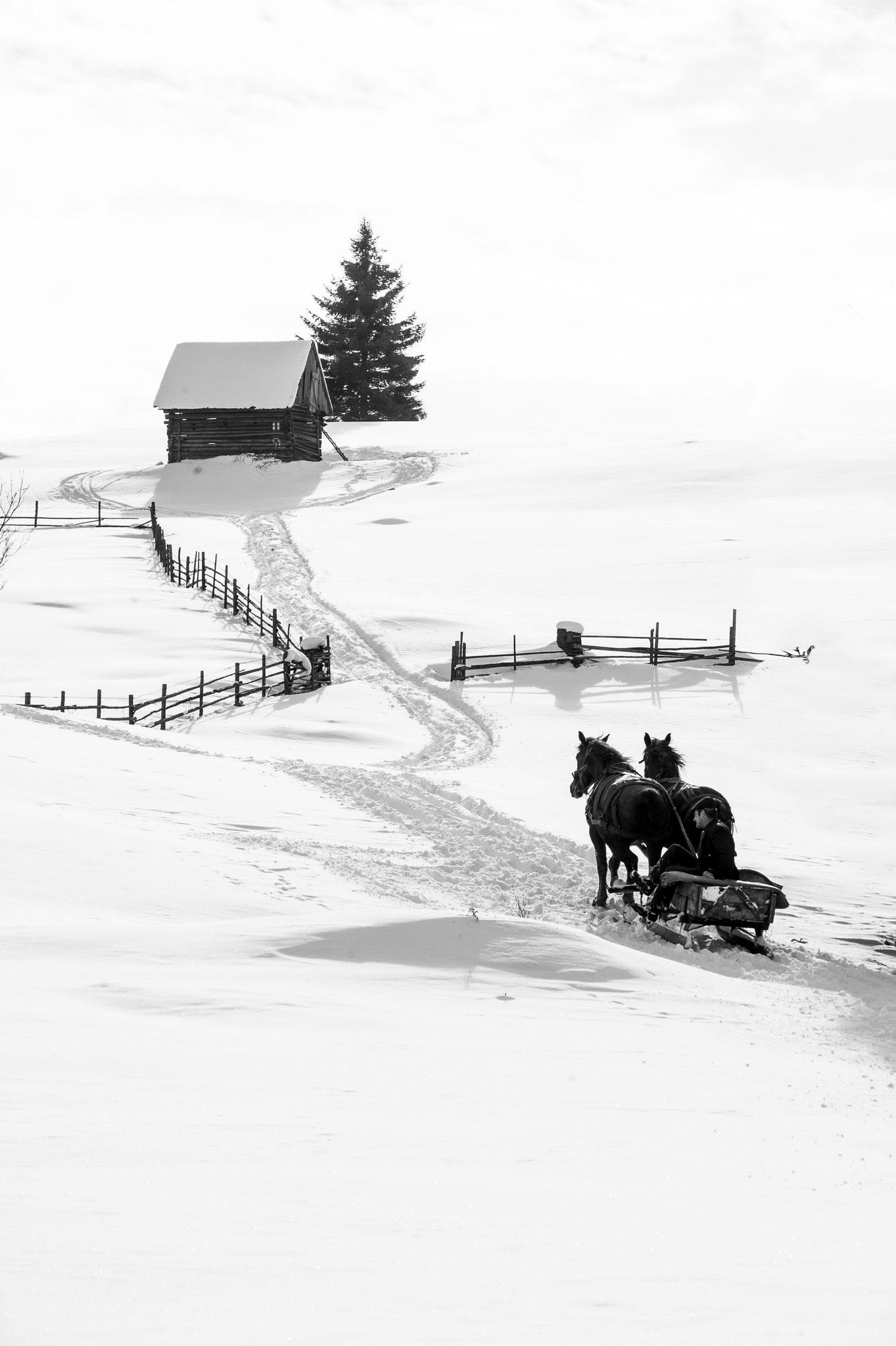 Tordai Ede EFIAPs (Romania) - Winter in Gyimes