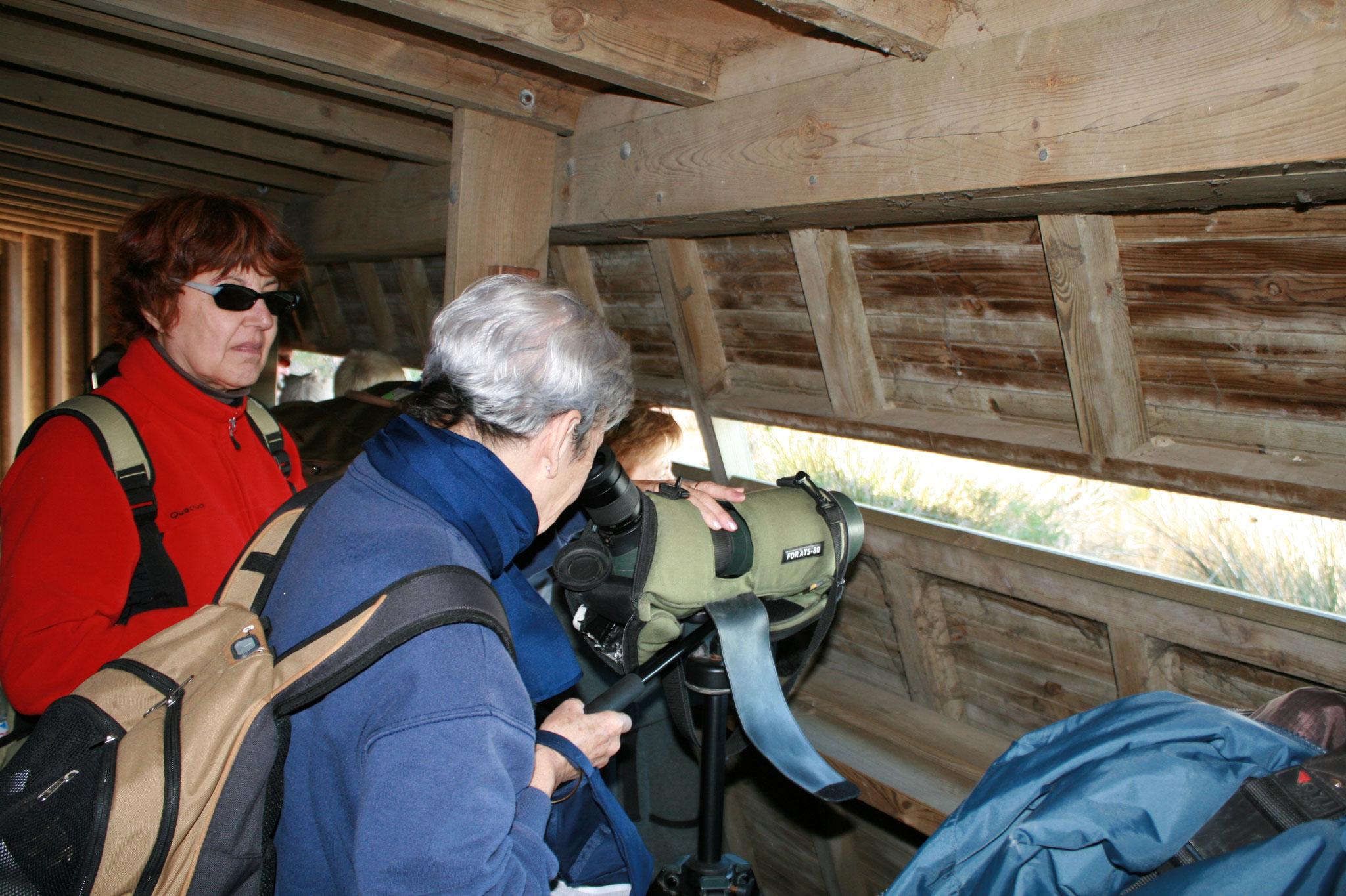 Visiteurs dans observatoire