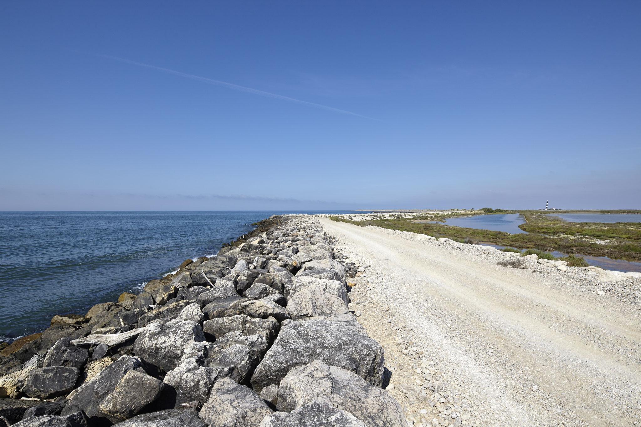 Piste qui longe le littoral dans le salin de Giraud