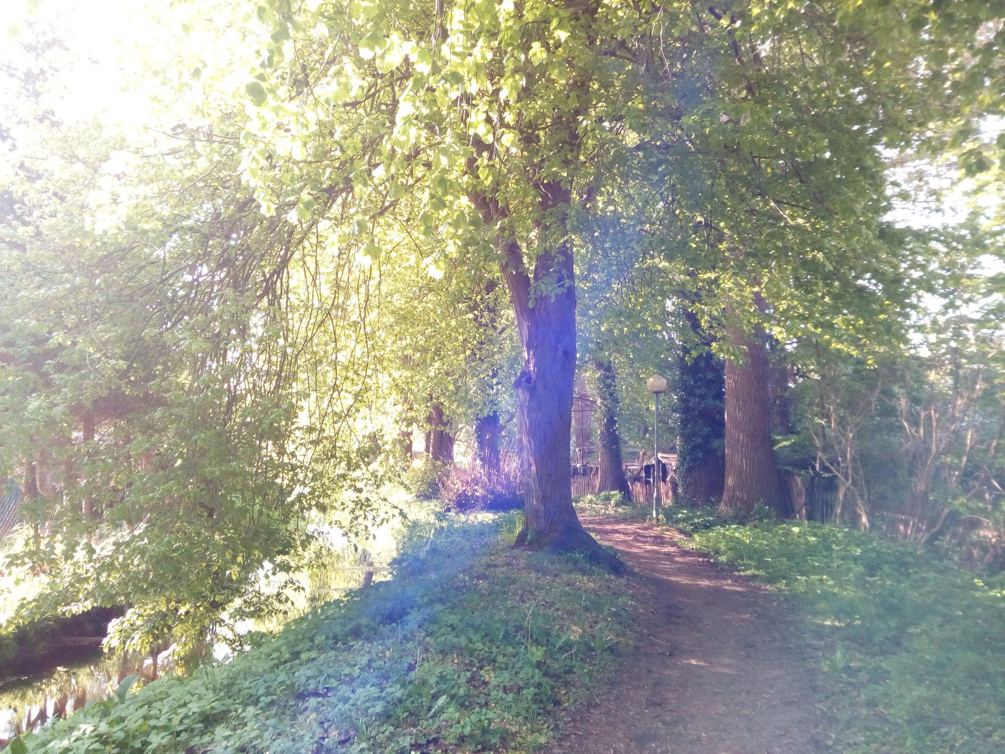 Spaziergang in Loitz