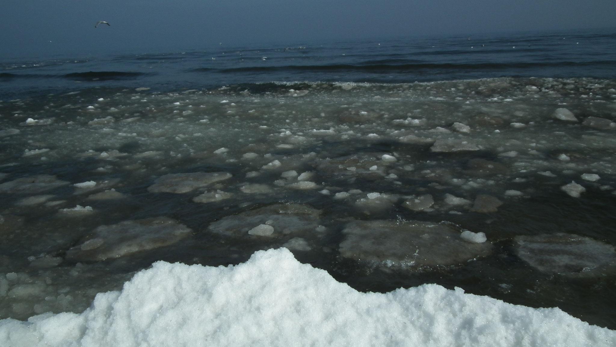Eisschollen am Ostseestrand
