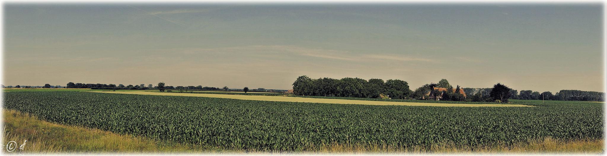 Ein wunderschön gelegener Bauernhof