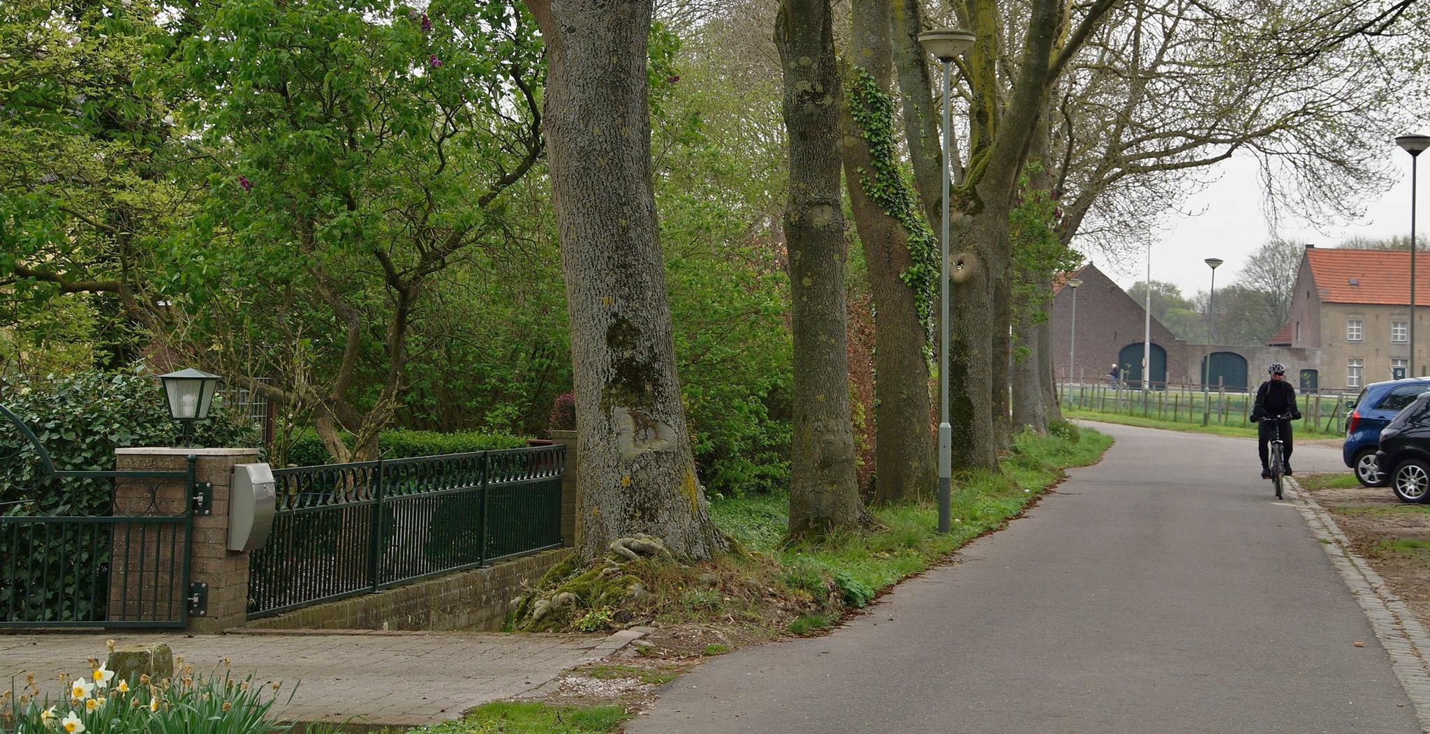 In Roosteren (NL)