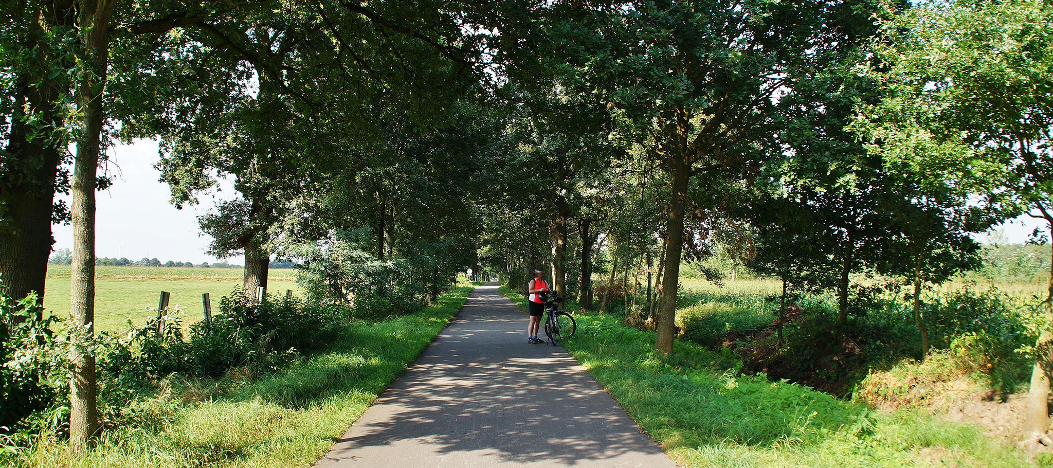 Ein Fahrradweg im Grünen
